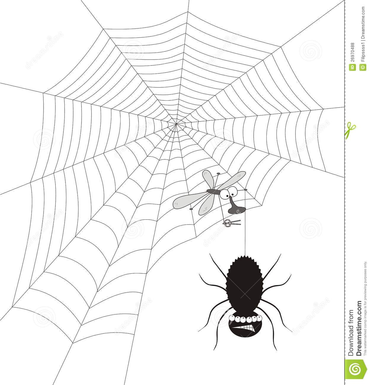 spider web with fly royalty free stock photos