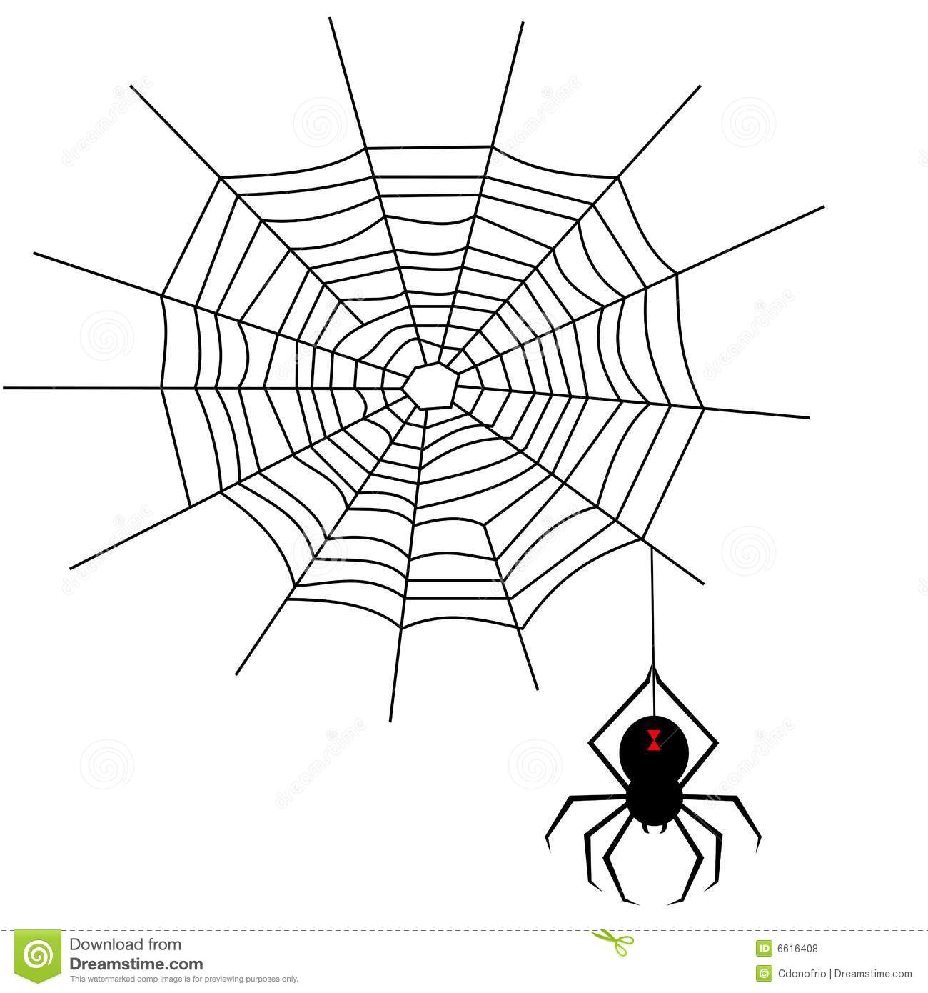 illustration of a spiderweb and black widow spider