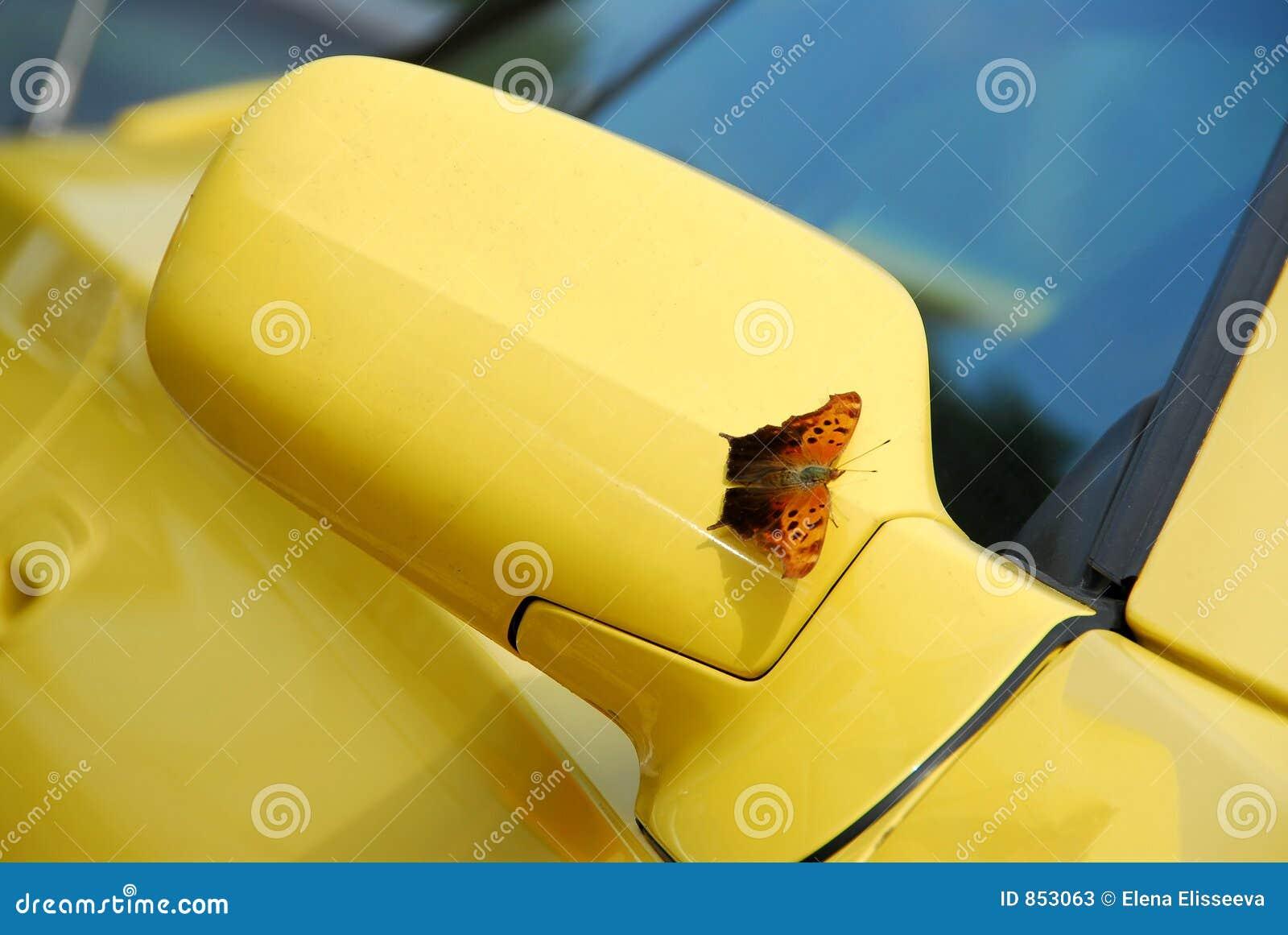 Spiegel des gelben Sportautos
