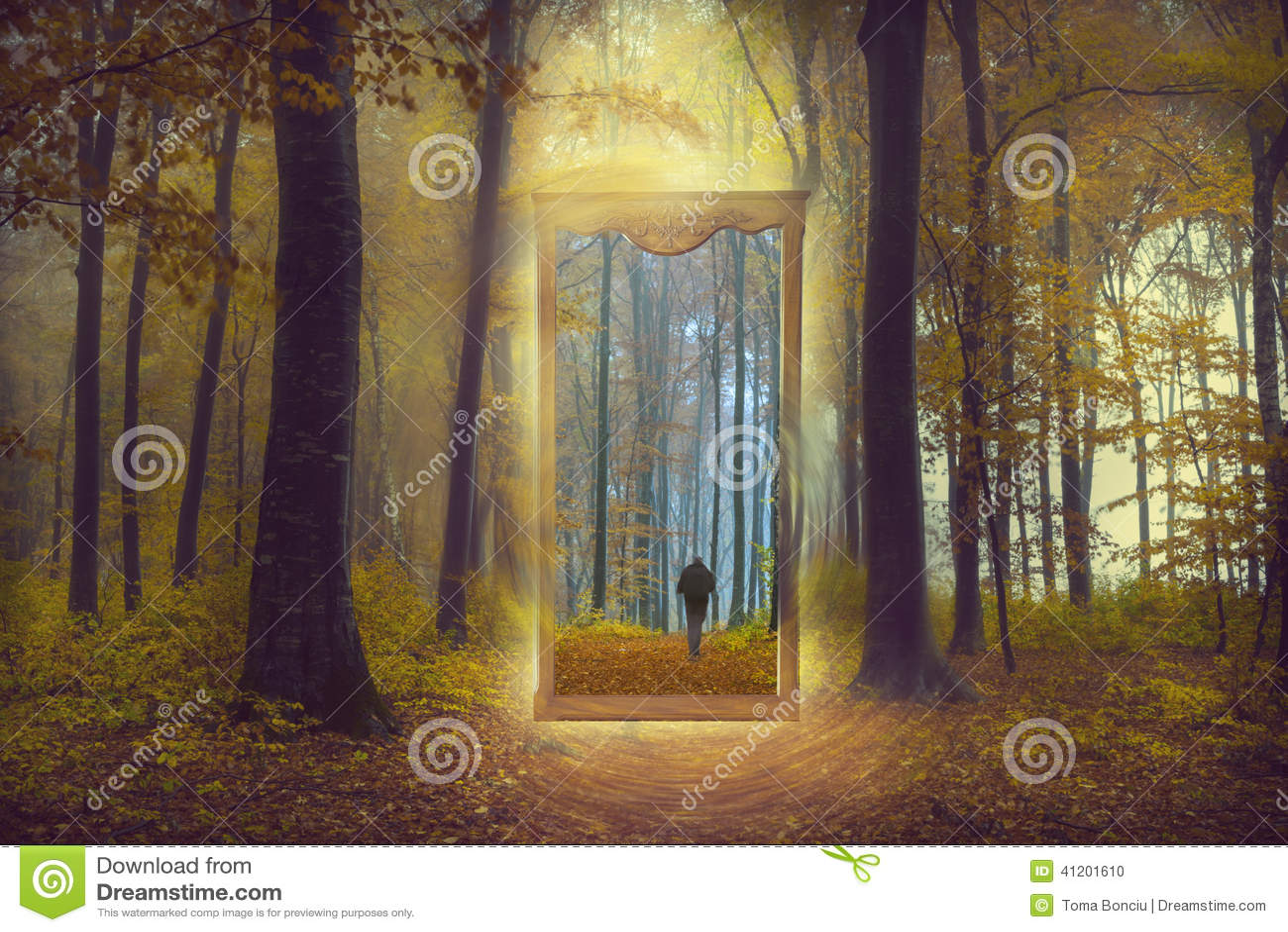 Spiegel door een andere wereld in een mistig bos stock foto beeld 41201610 - Spiegel rivoli huis van de wereld ...