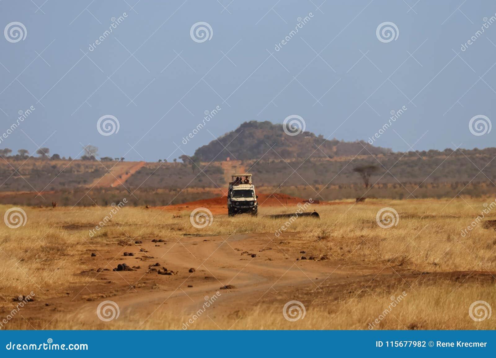 Spiel-Antrieb in Tsavo Ost