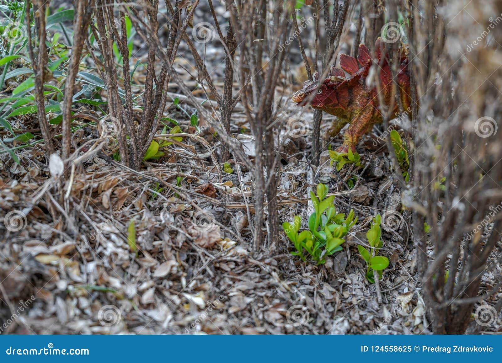 Spielzeugdinosaurier im Wald