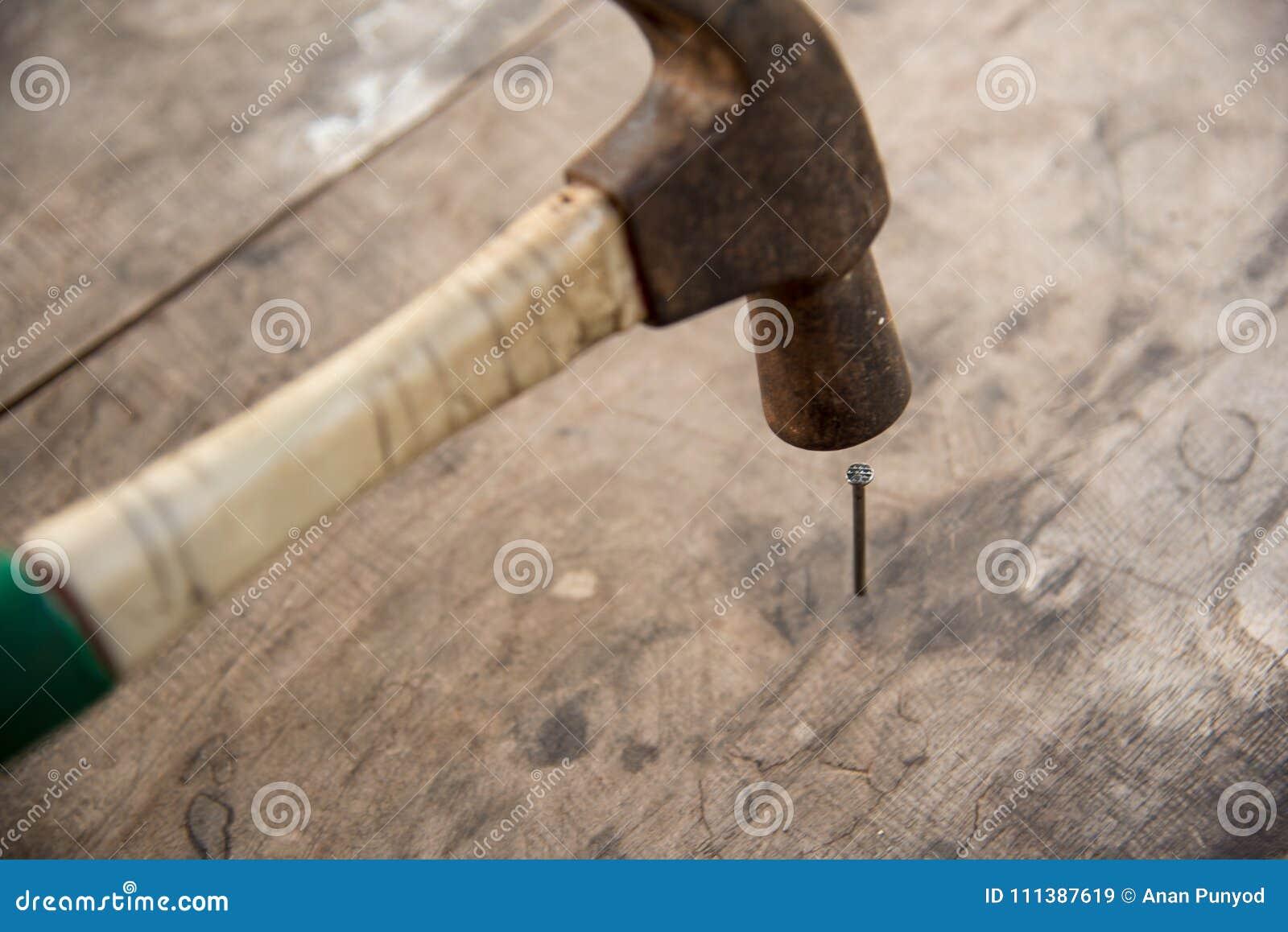 Spikar den satta övre hammaren för slutet på trägolv