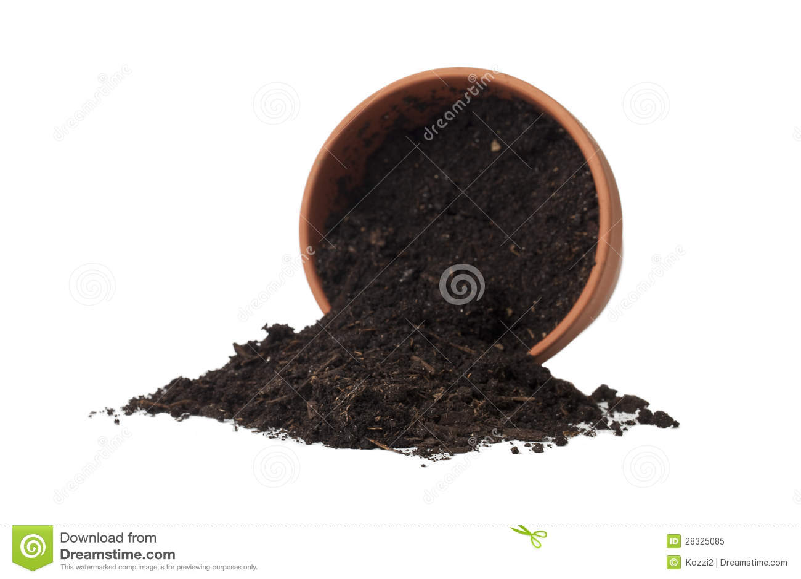 Spilled Soil In The Flower Pot Royalty Free Stock Image