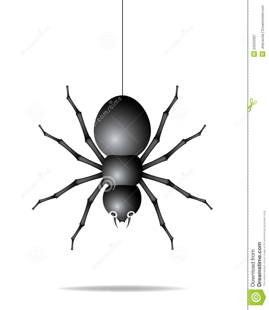 Sinners in the hands of an angry god spider