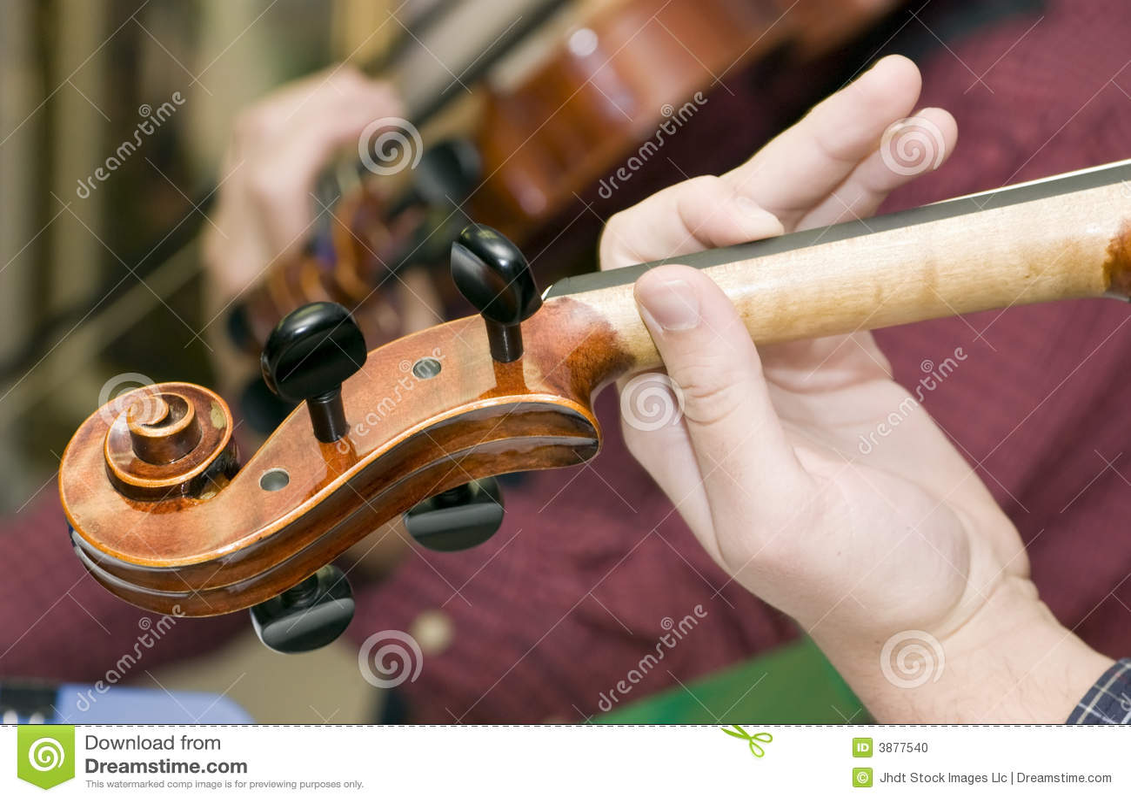 Spine del violino