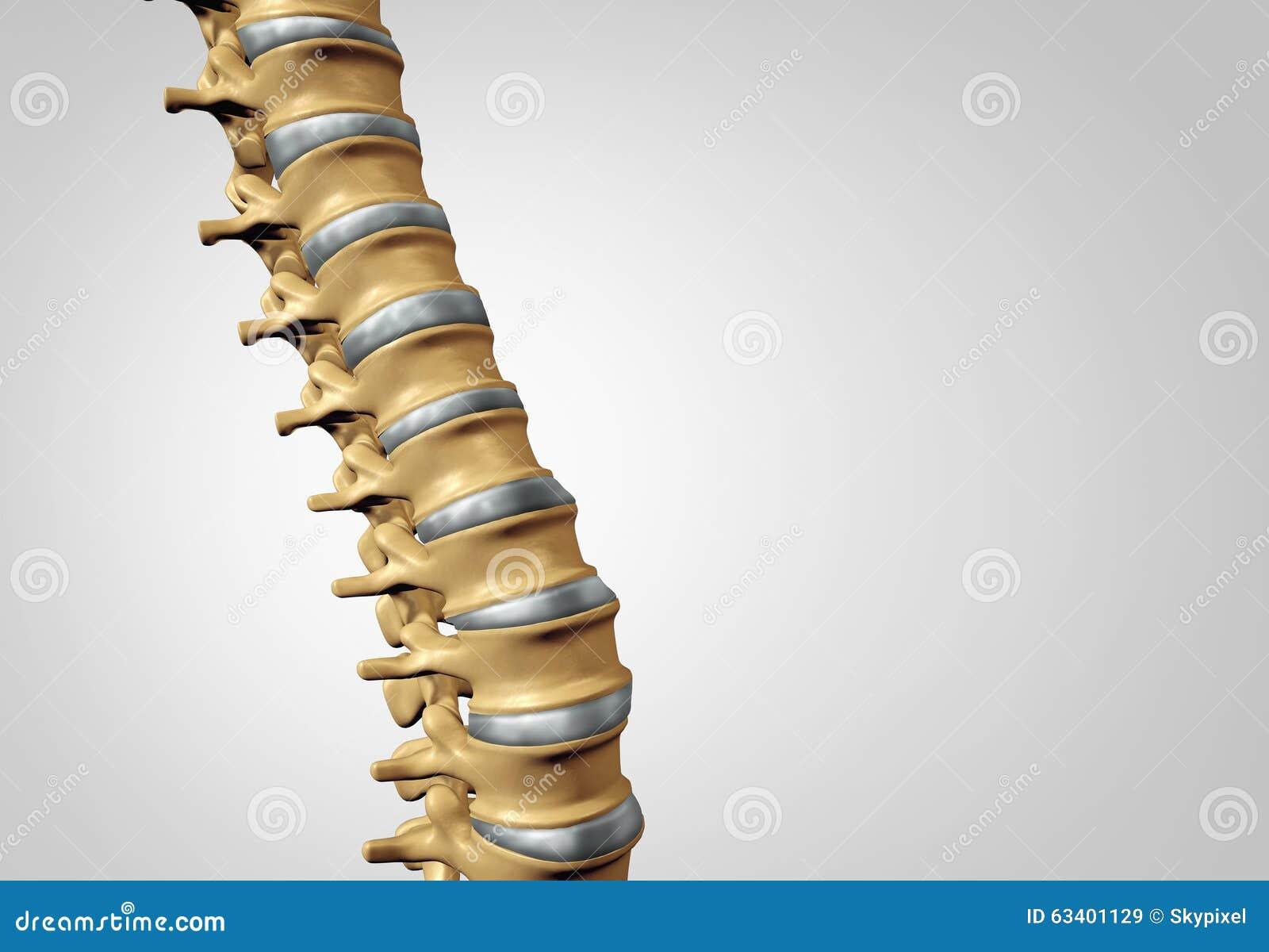 Spine Diagnostic stock illustration. Illustration of arthritis ...