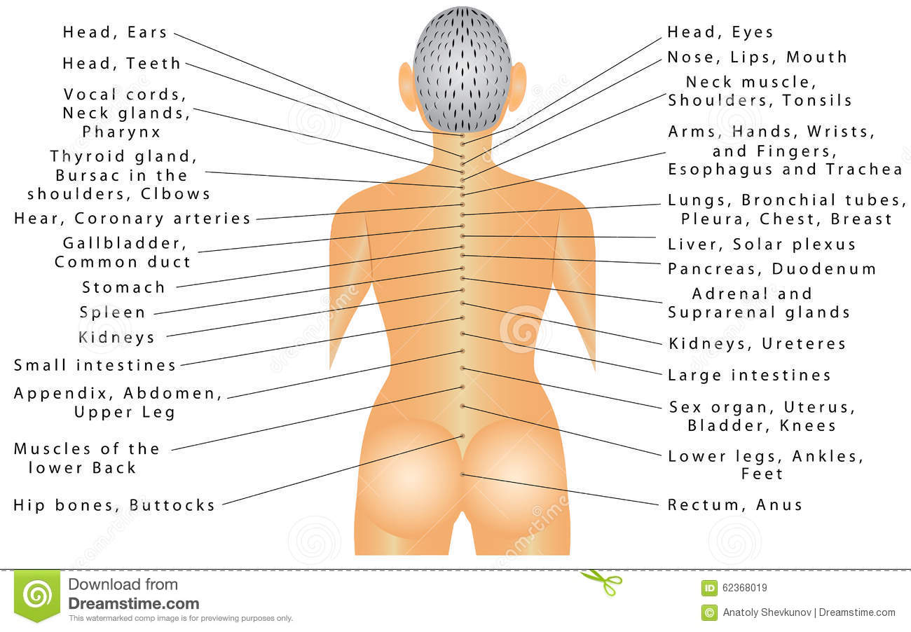 Pains in different parts of the body - Autonomic