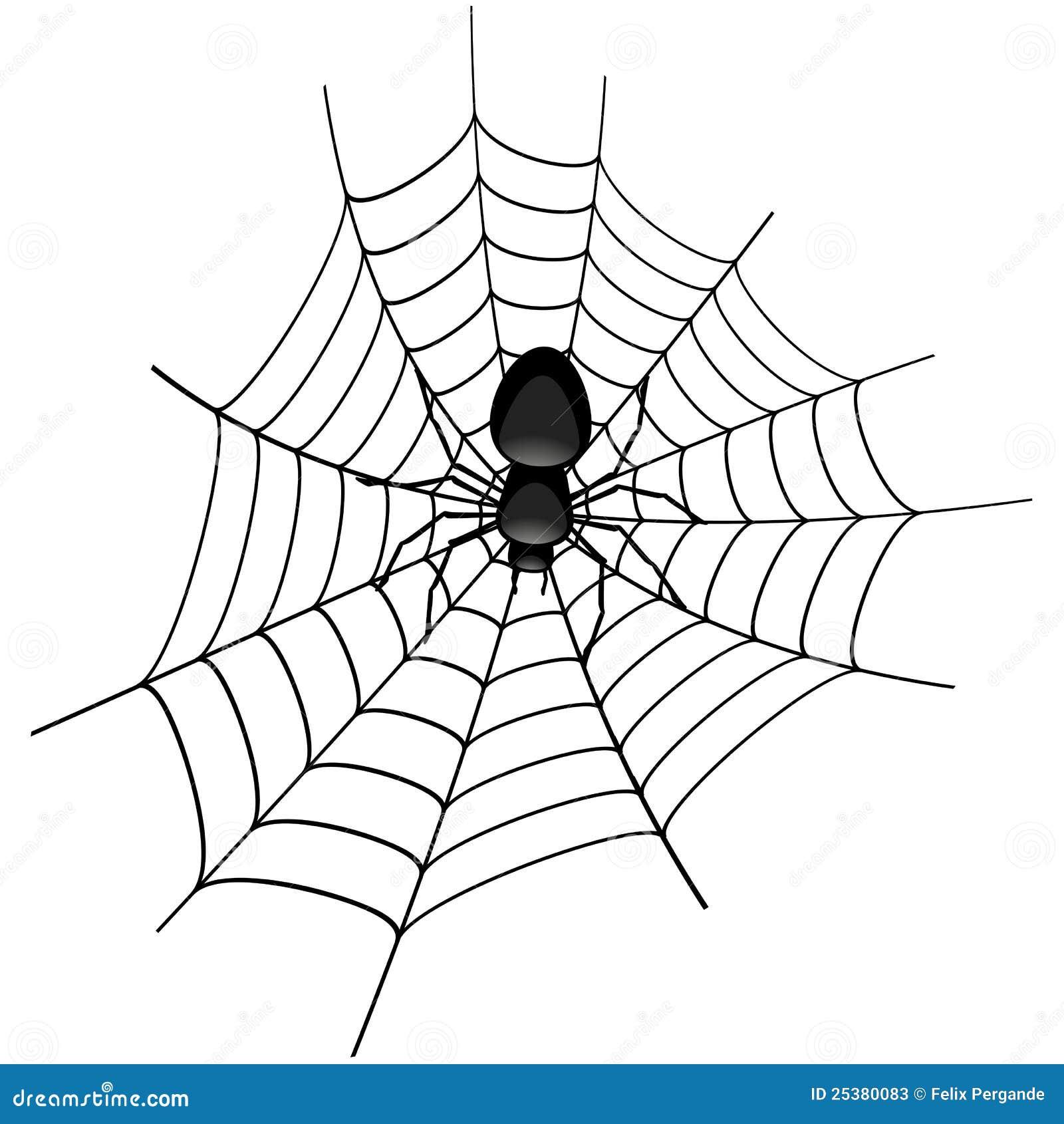 spinne in einem spinnennetz vektor abbildung
