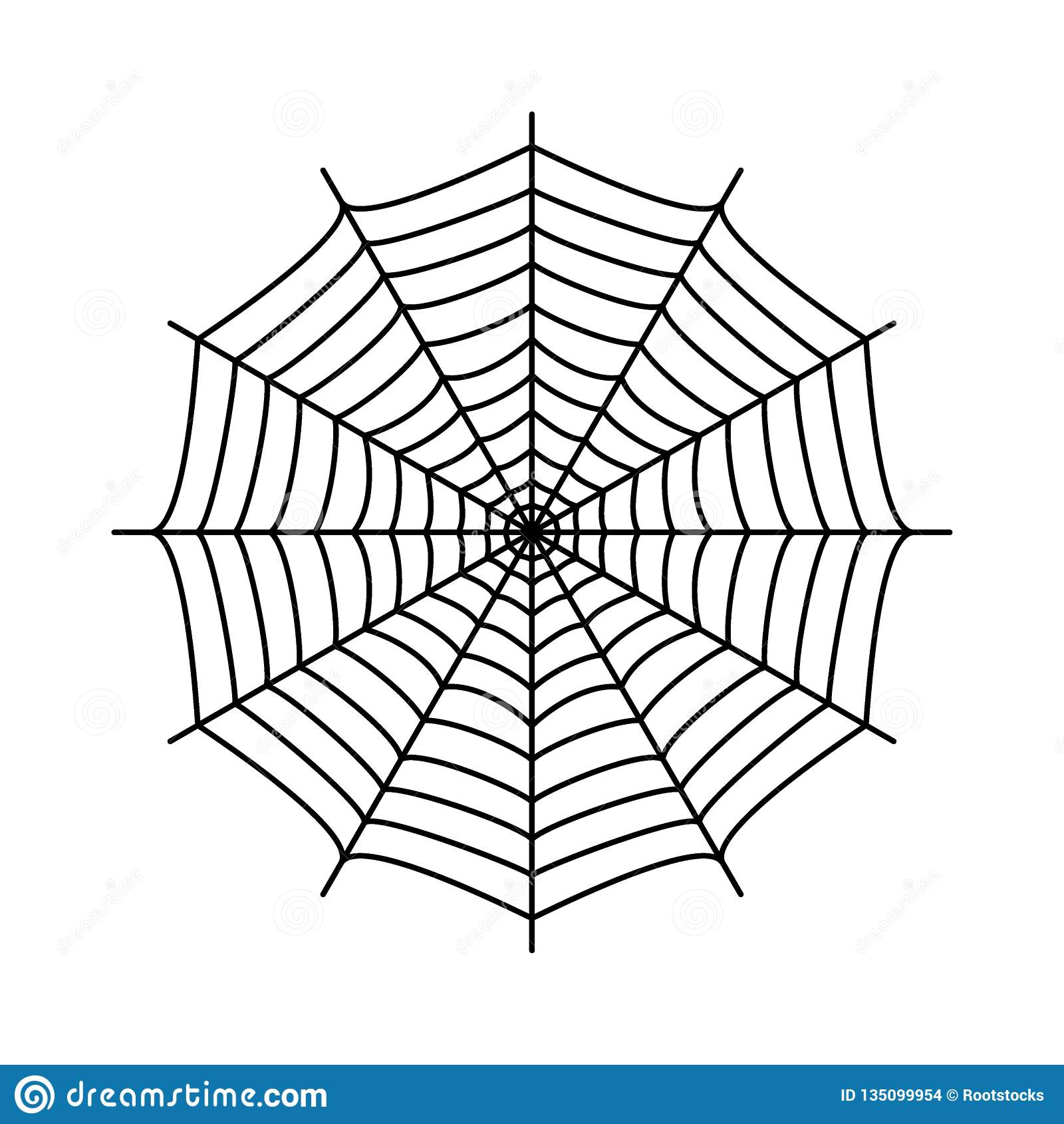 spinnennetz spinne  s netz stock abbildung  illustration