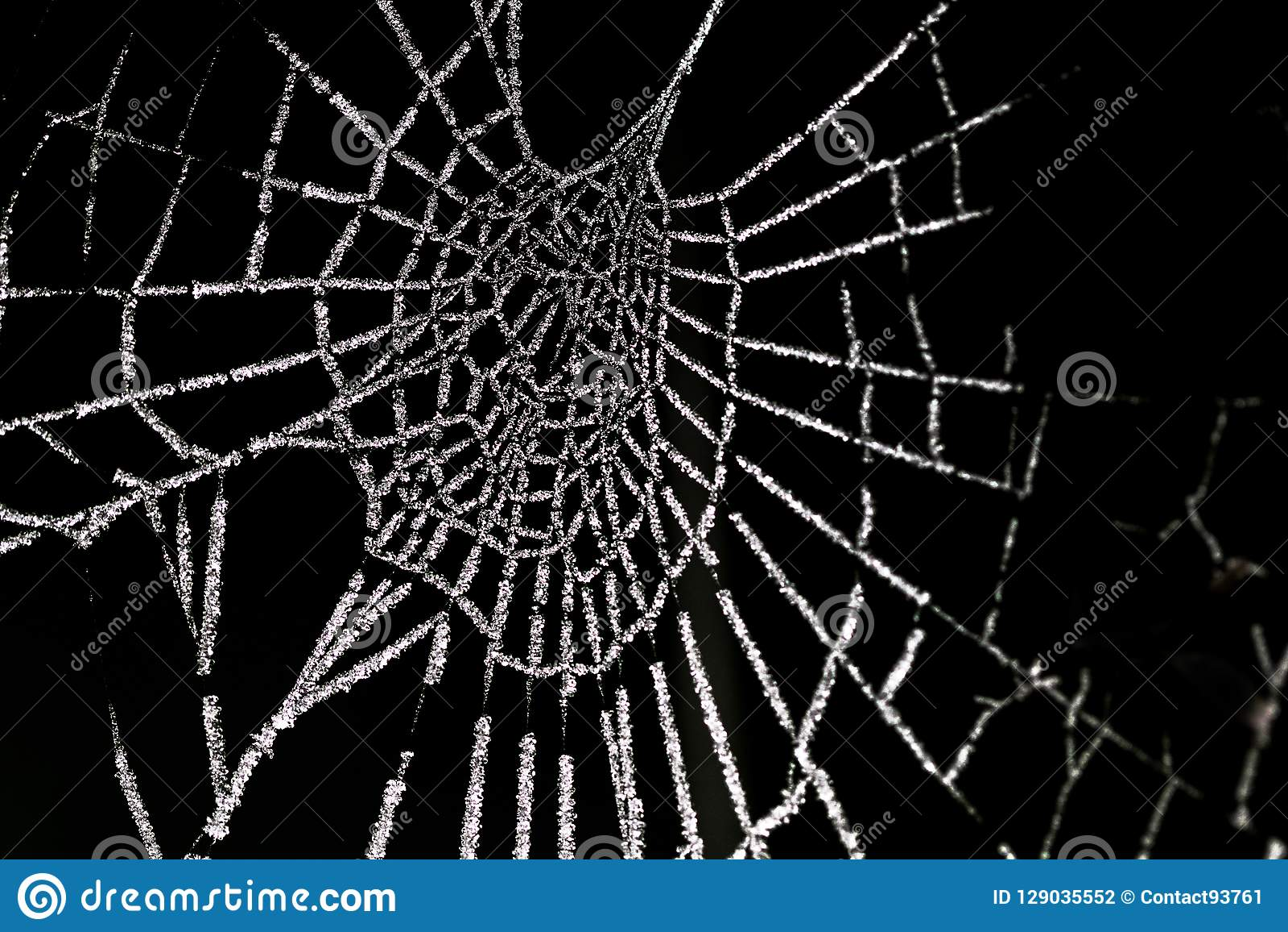 Spinnenweb de Berijpte, Web de aranha geada