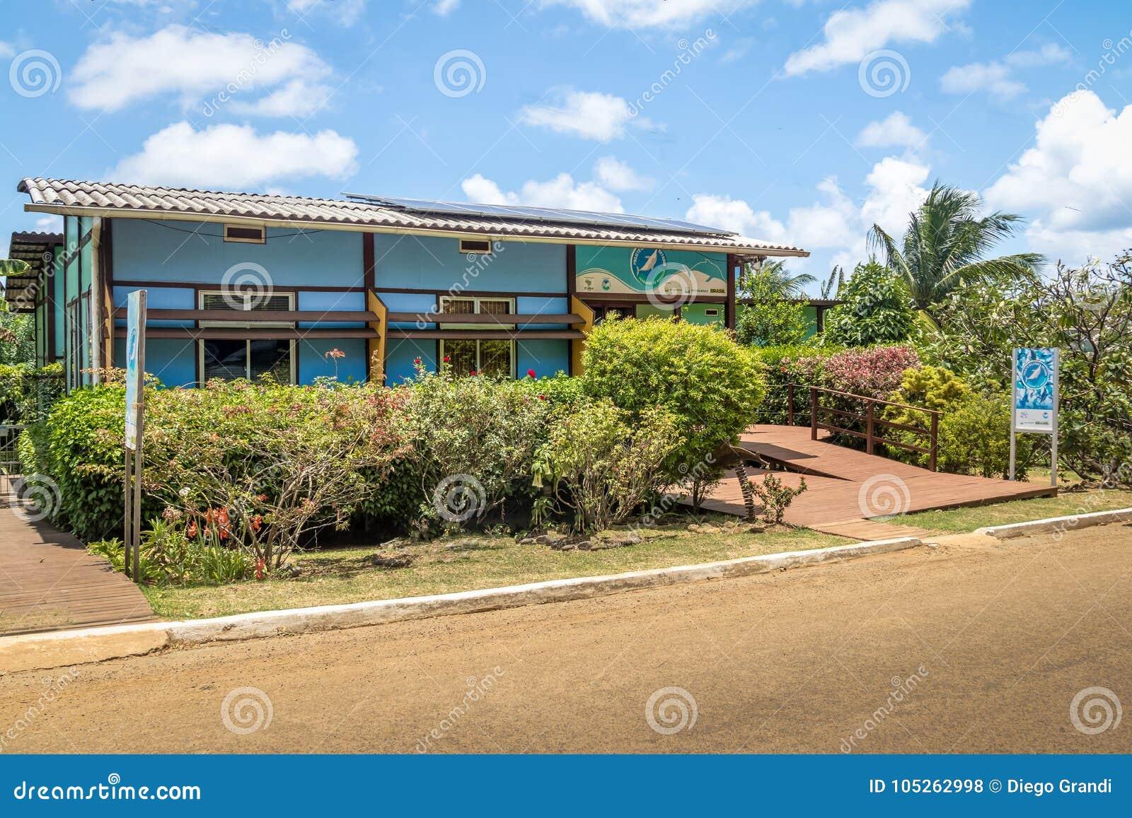 Spinner-Delphin-Projekt-Hauptsitze Golfinho Rotador an Boldro-Dorf - Fernando de Noronha, Pernambuco, Brasilien