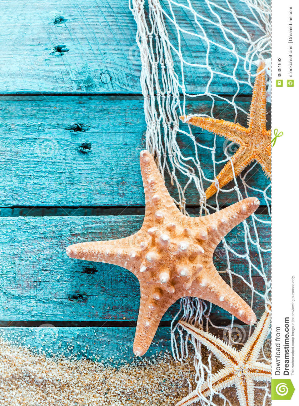 Colorful Starfish Painting Spiny starfish on turquoise painted boards ...