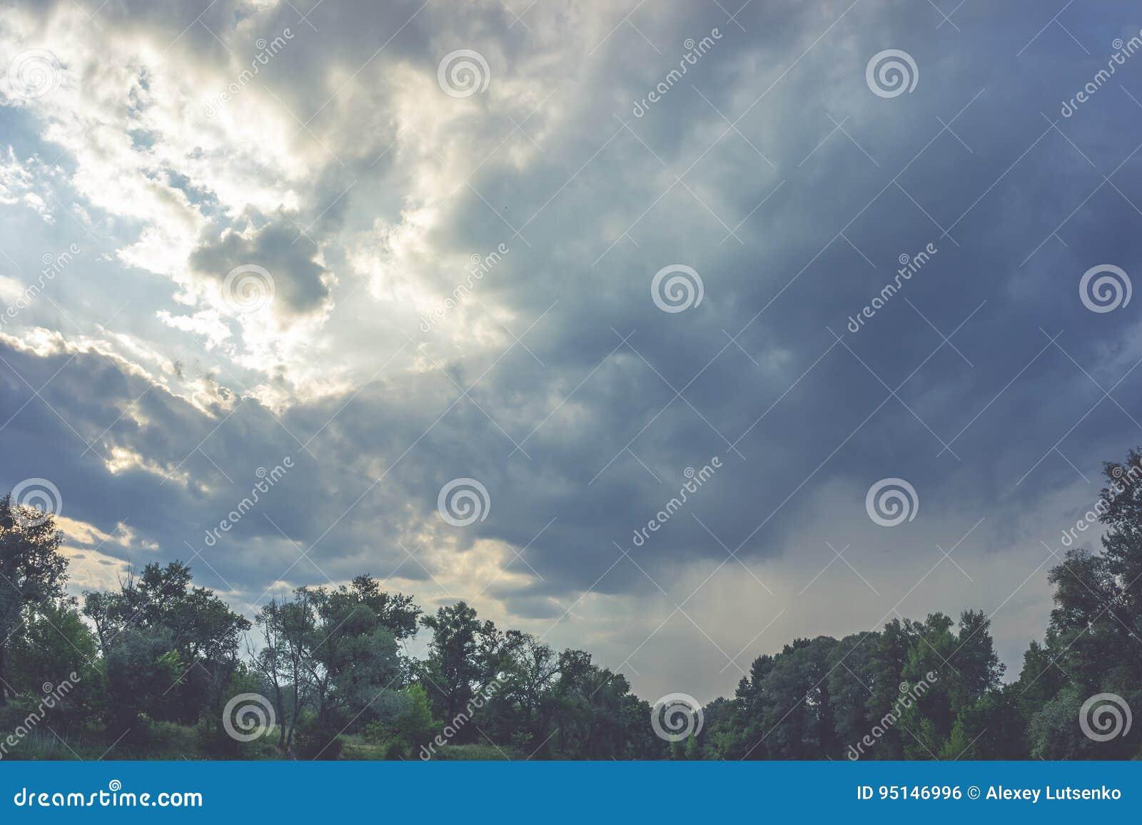 Spitzenlinie der grünen Bäume über Himmel
