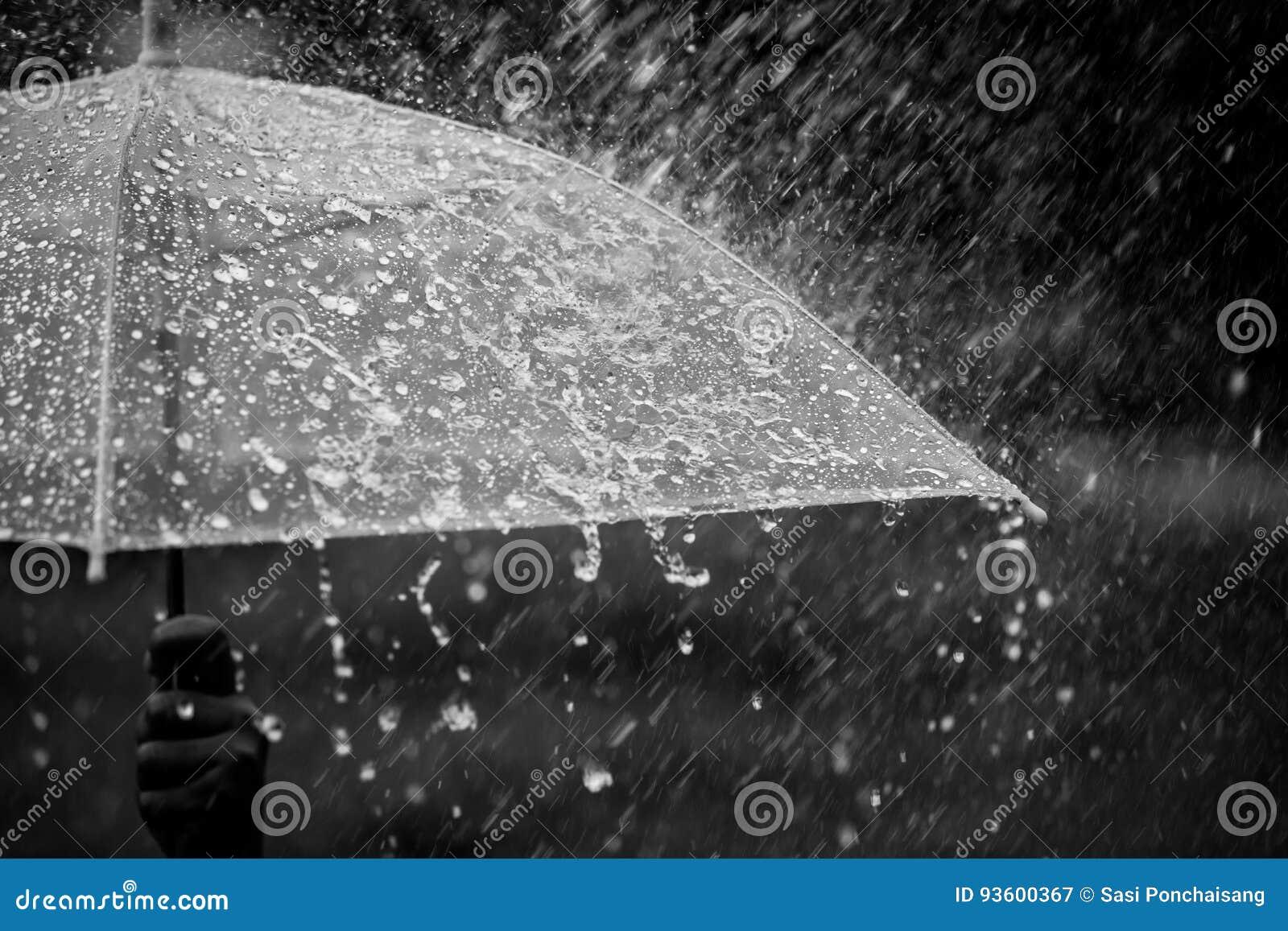 splashing water on umbrella in the rain stock image image of drop