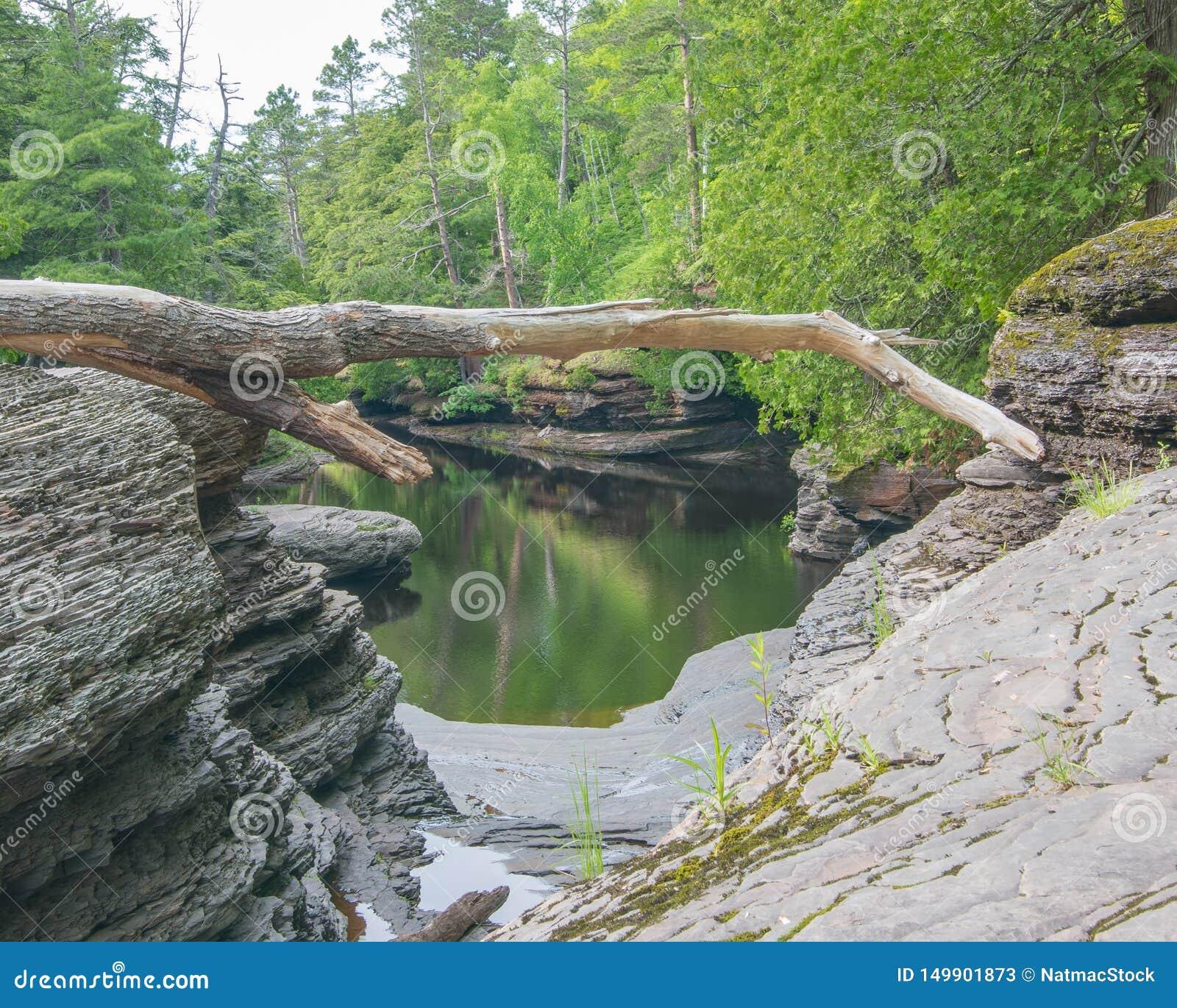Spokój wody na skalistej lasowej linii brzegowej rzeka w jeżatek gór pustkowia stanu parku w Górnym półwysepie Michigan