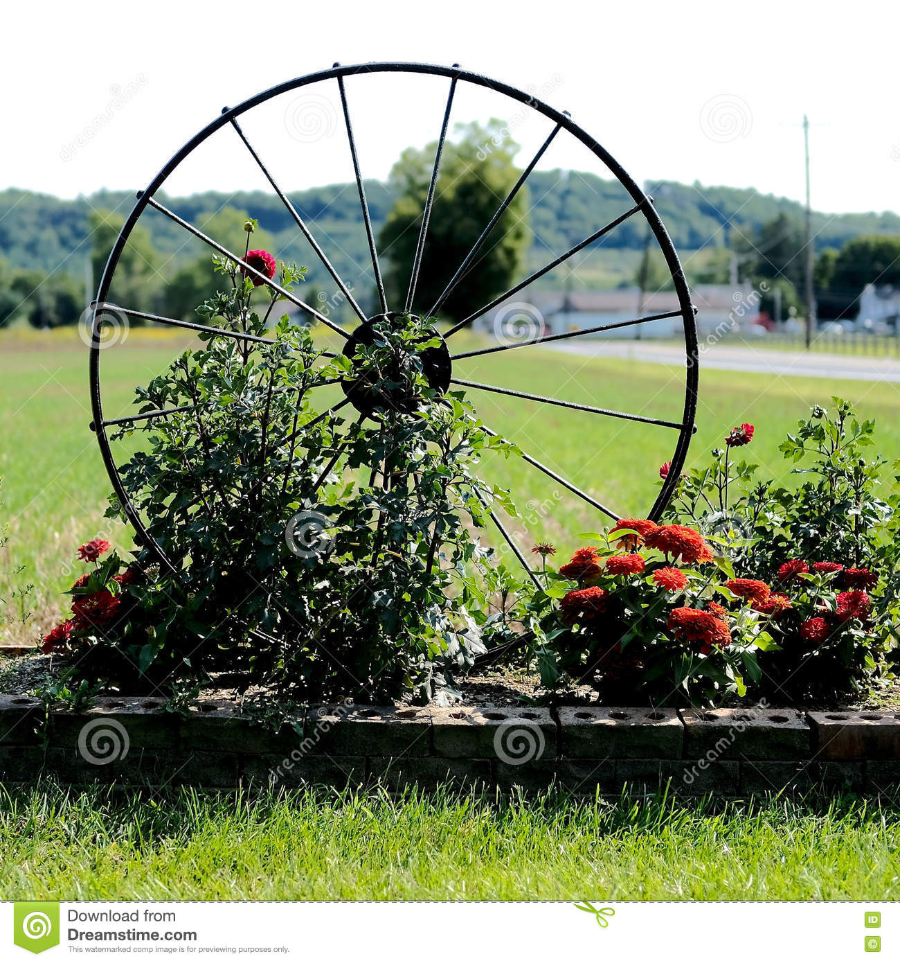Spoked Wheel Garden Decoration Stock Photo Image Of Lawn Planter 78888668