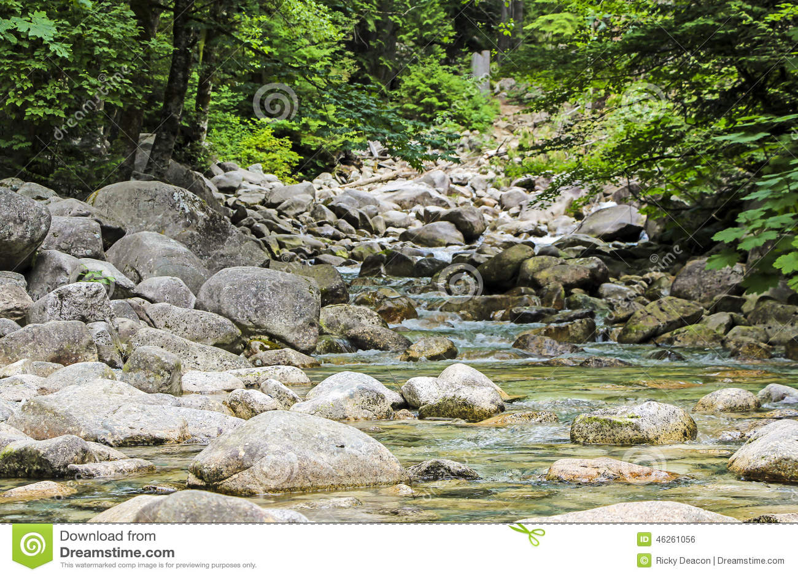 Spokojna rzeka i kamienie