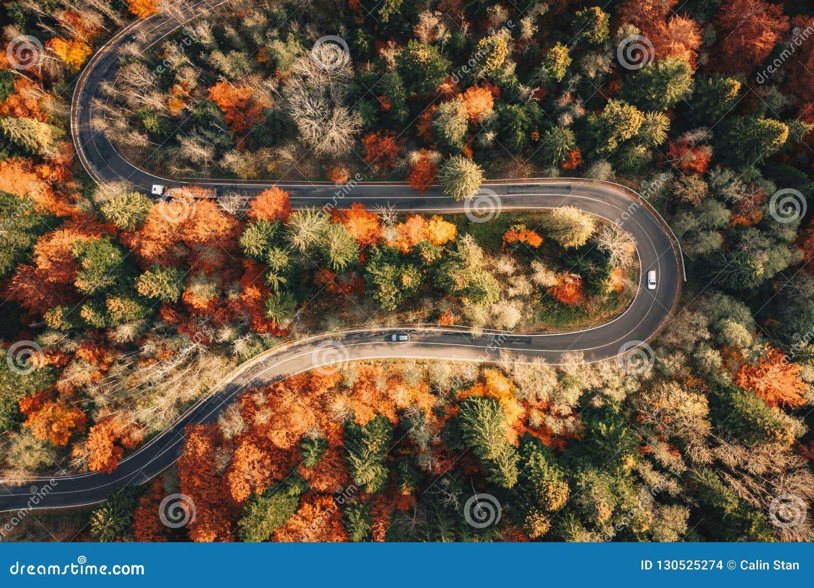Spolande bergvägho skogen i hösten med bilar