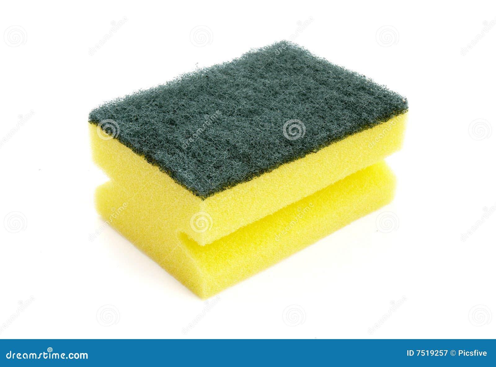 Sponge 1 Stock Image Image Of Isolated Icon Object 7519257