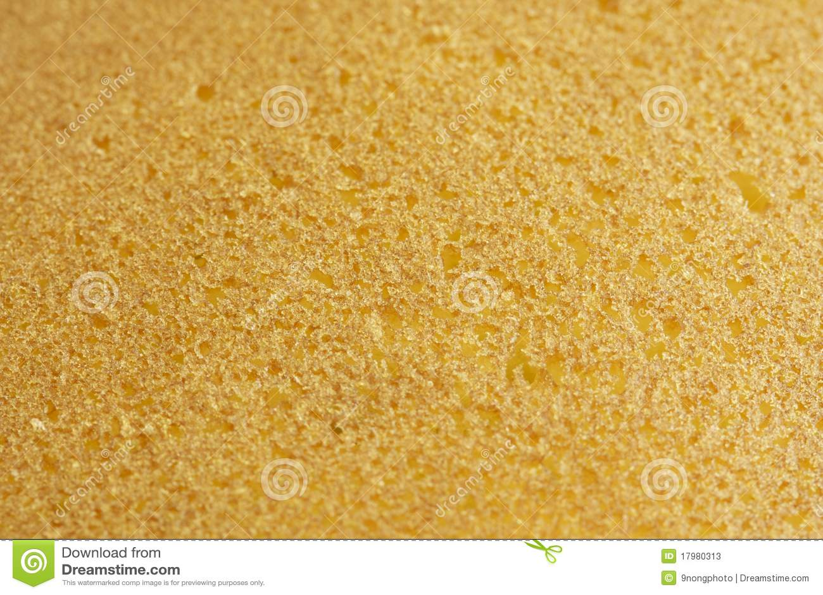 Sponge Cake Texture Stock Photos Image 17980313