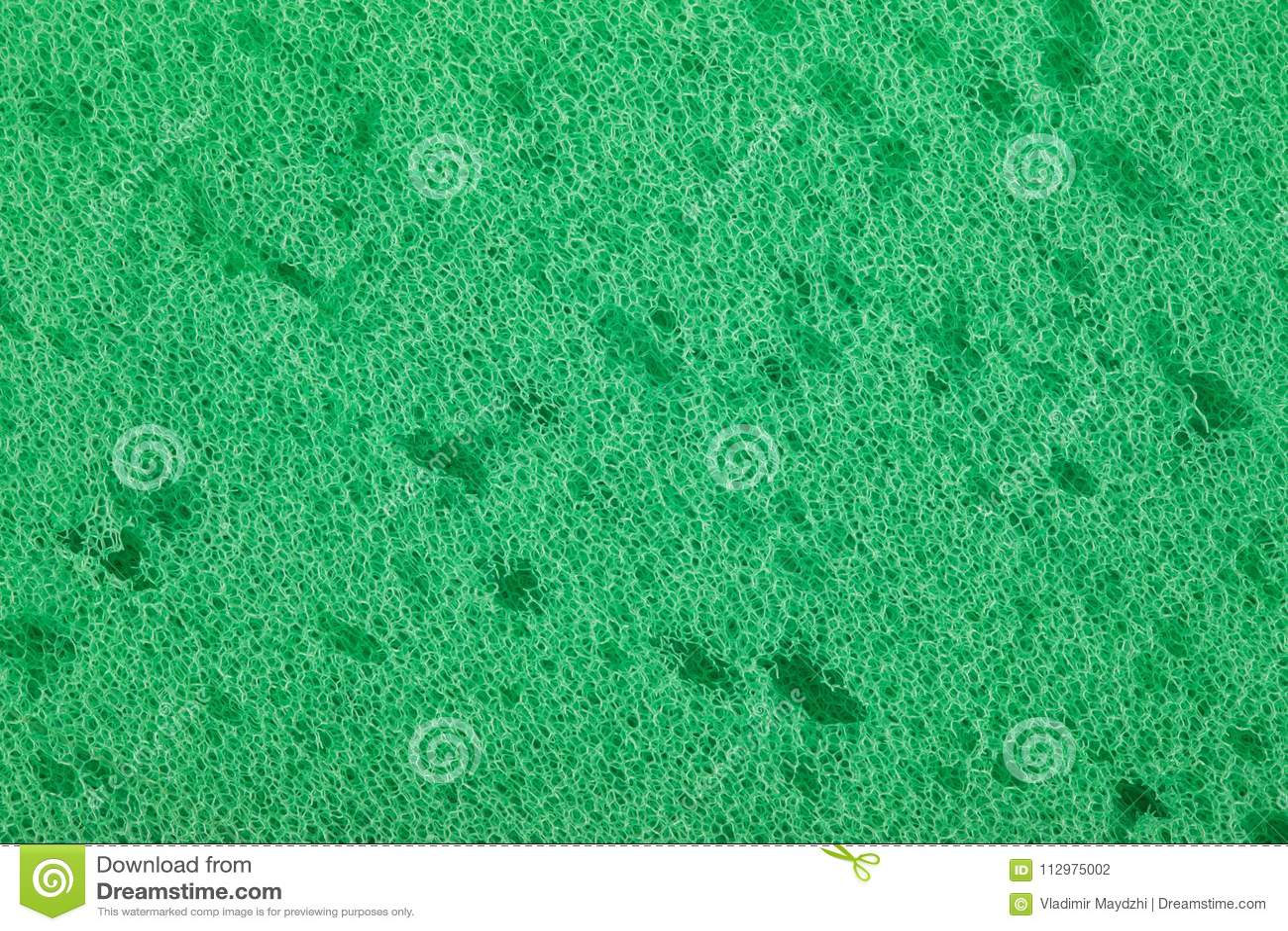 Sponge texture or background