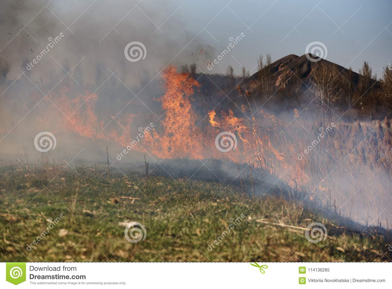 Spontaneous uncontrolled spread of fire