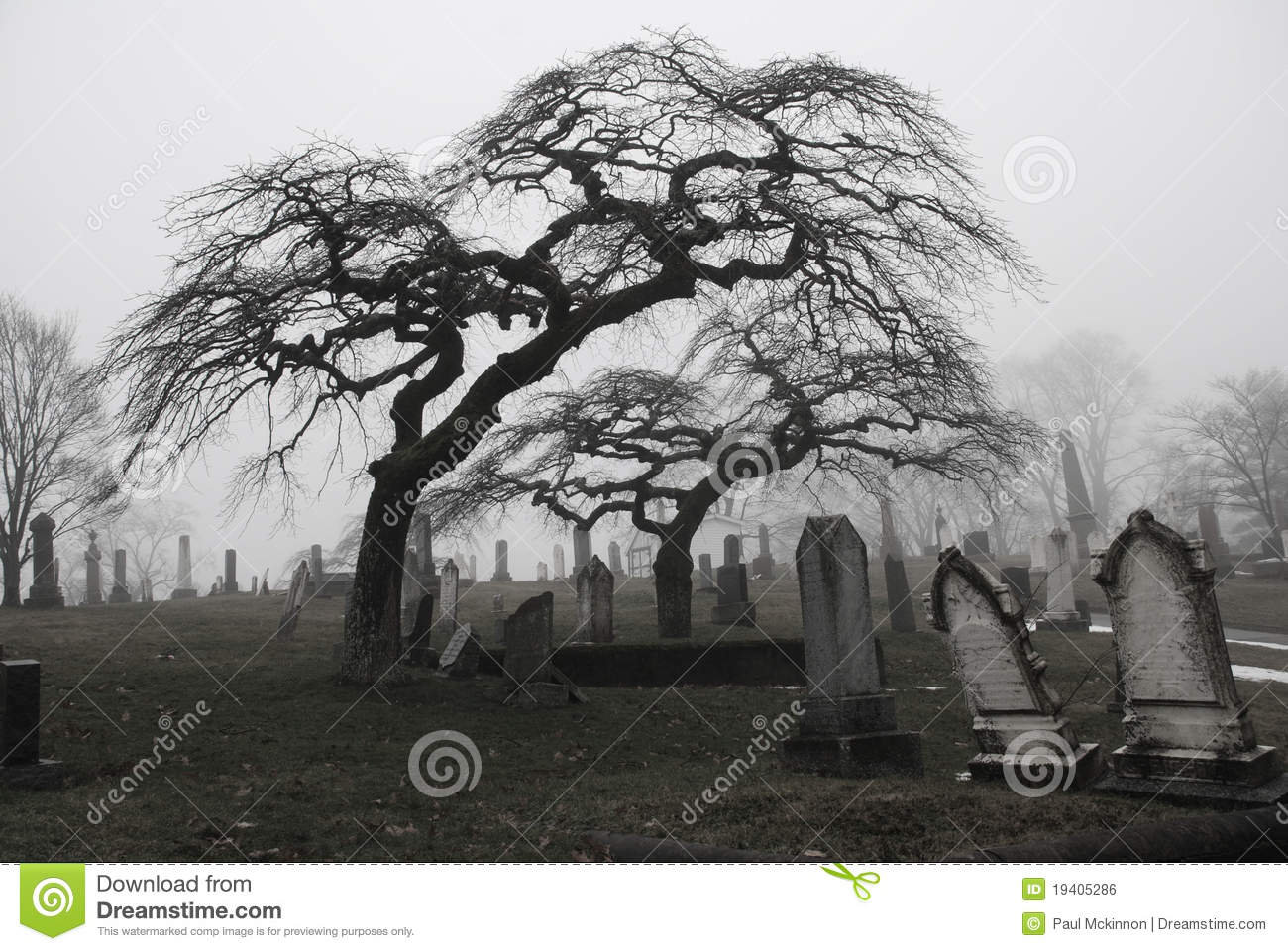 Spooky Graveyard Scene With Scary Trees A Stock Photo ...