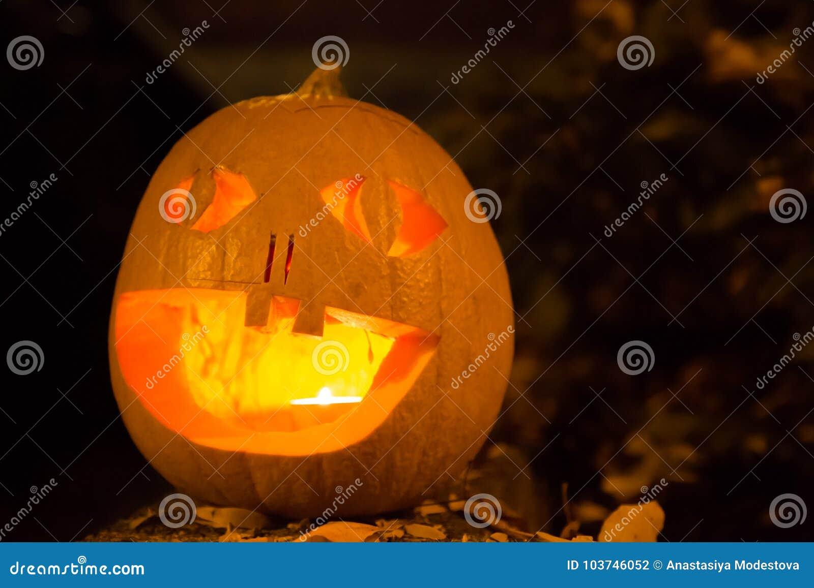 Carved halloween pumpkin spooky face dark background