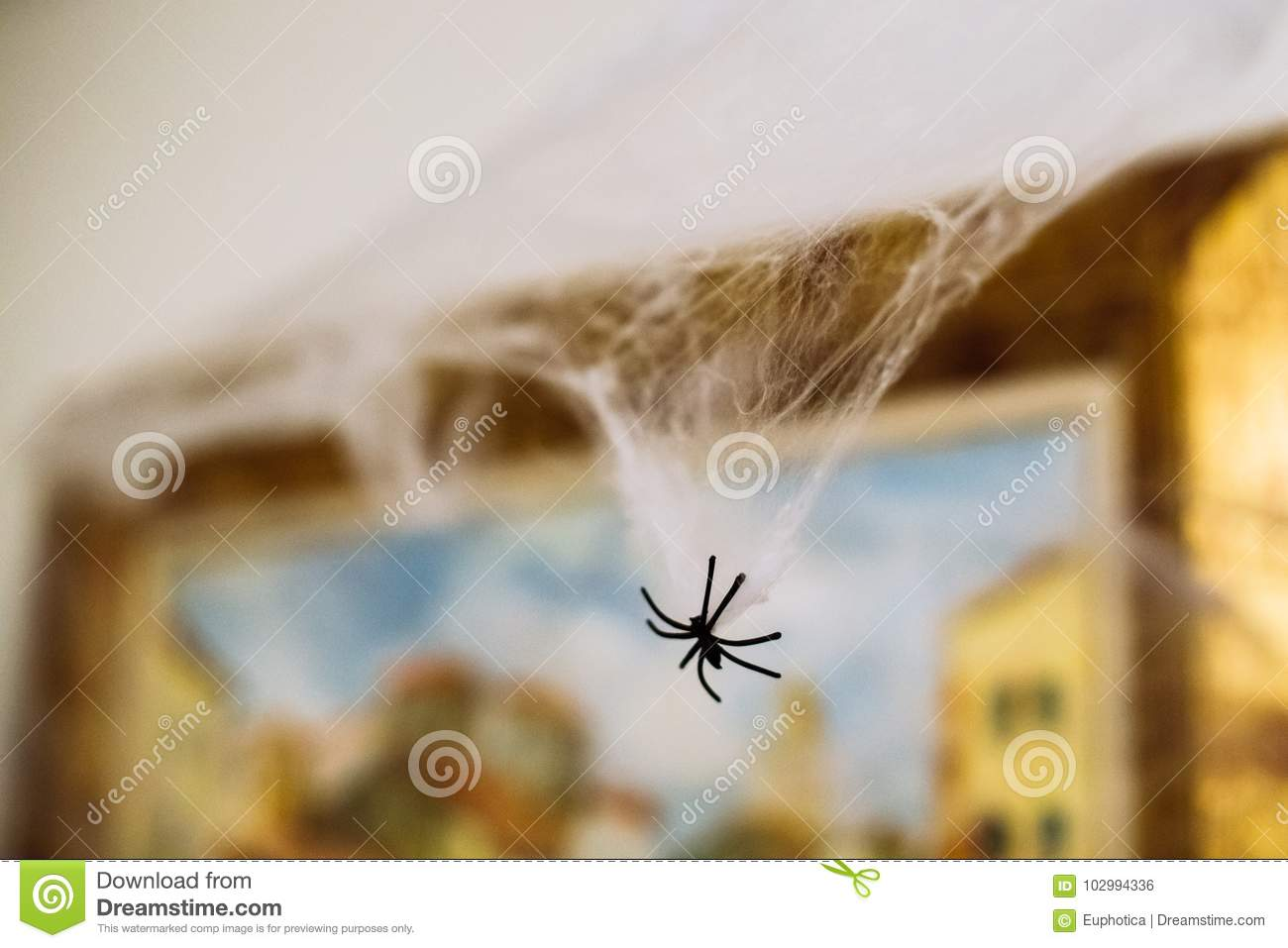 Spooky plastic spider hanging on spiderweb for Halloween