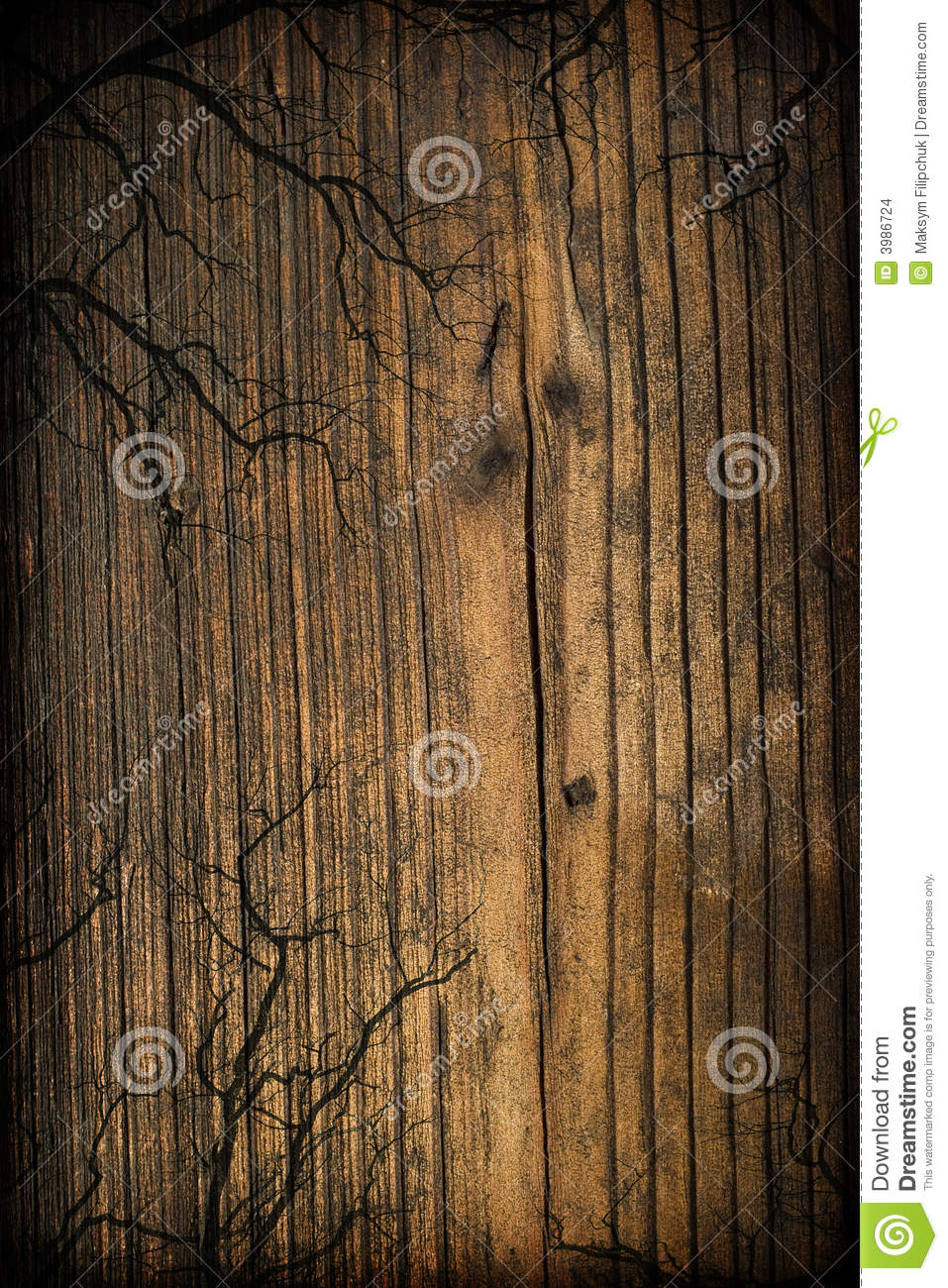 Spooky wooden background