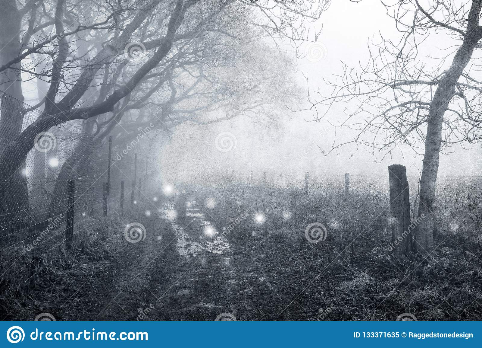 Floating In Twilight Winter Haze Like >> A Spooky Woodland Path In Winter With Ghostly Lights Floating Along