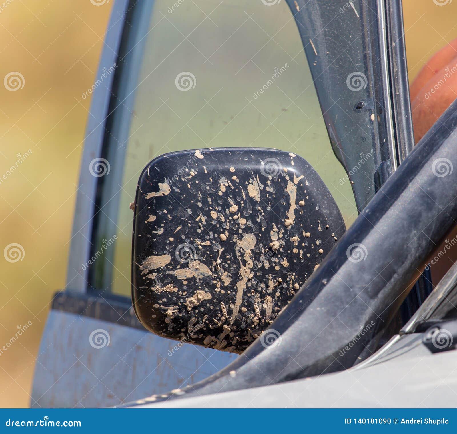Sporcizia sull automobile di estate