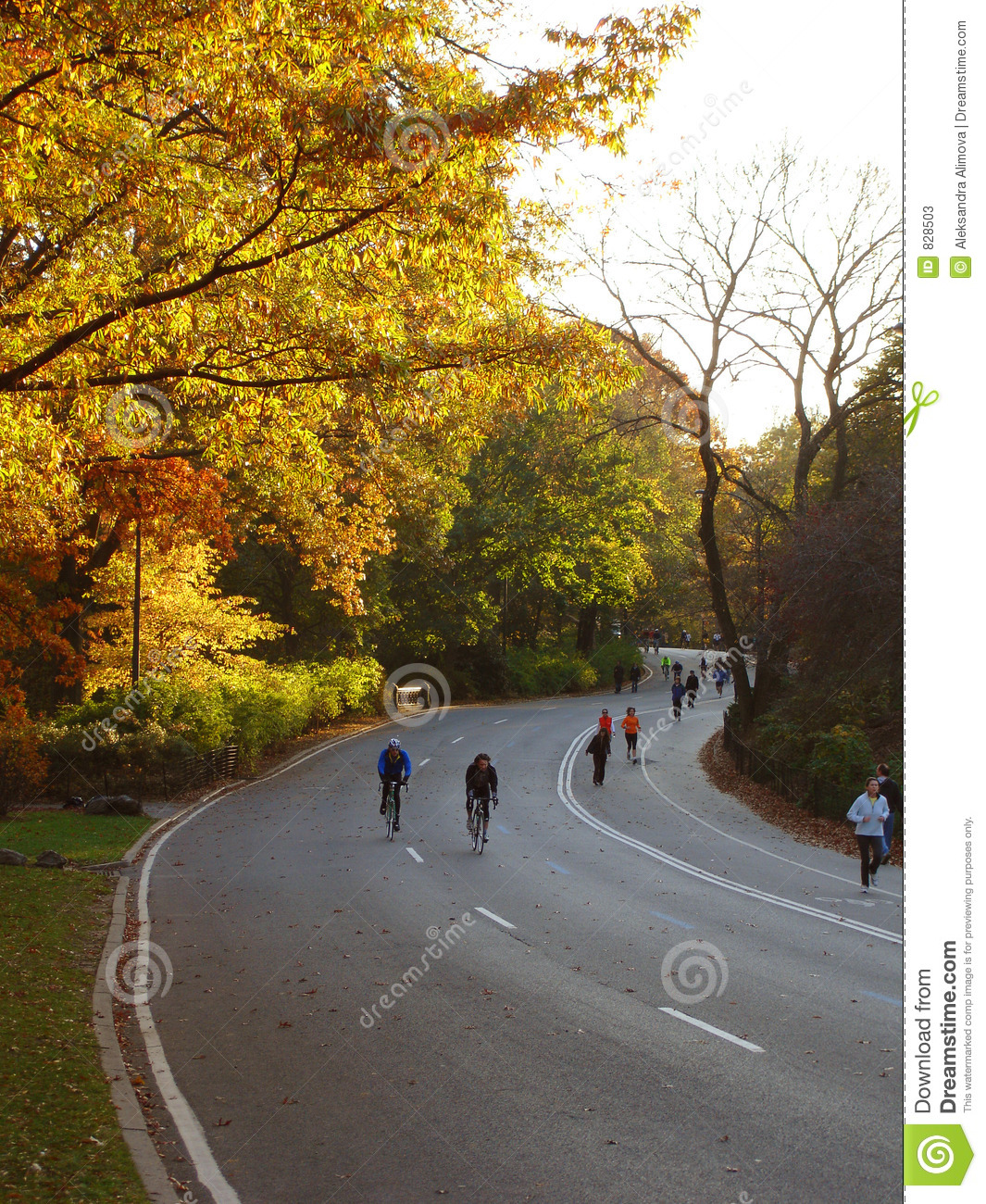 Sport activity in Central Park, New York, NY. Fall evening