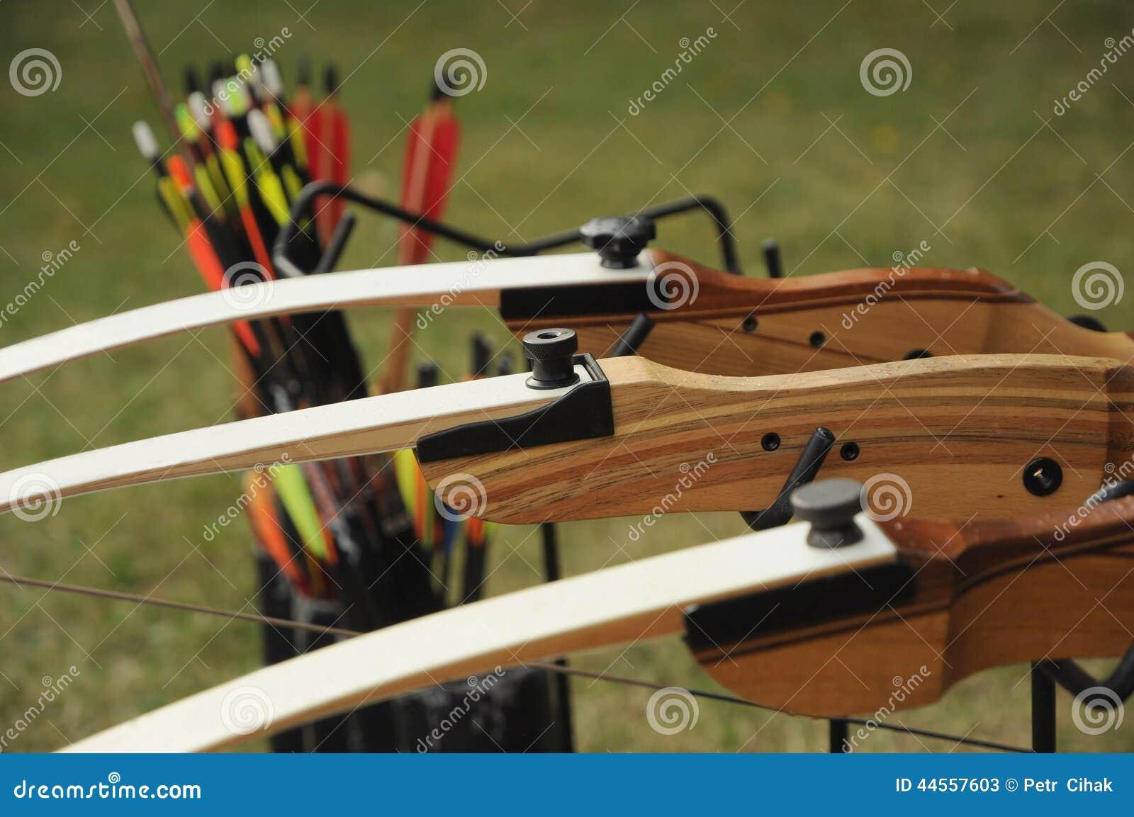 Sport archery