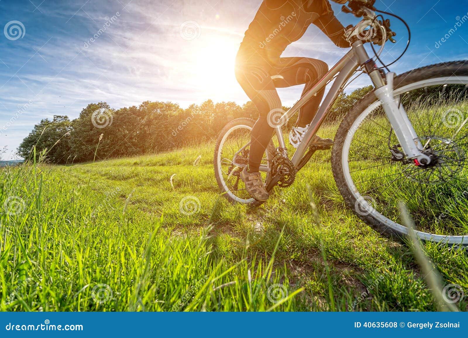 Sport bike, cycling in the beautiful meadow, detail photo