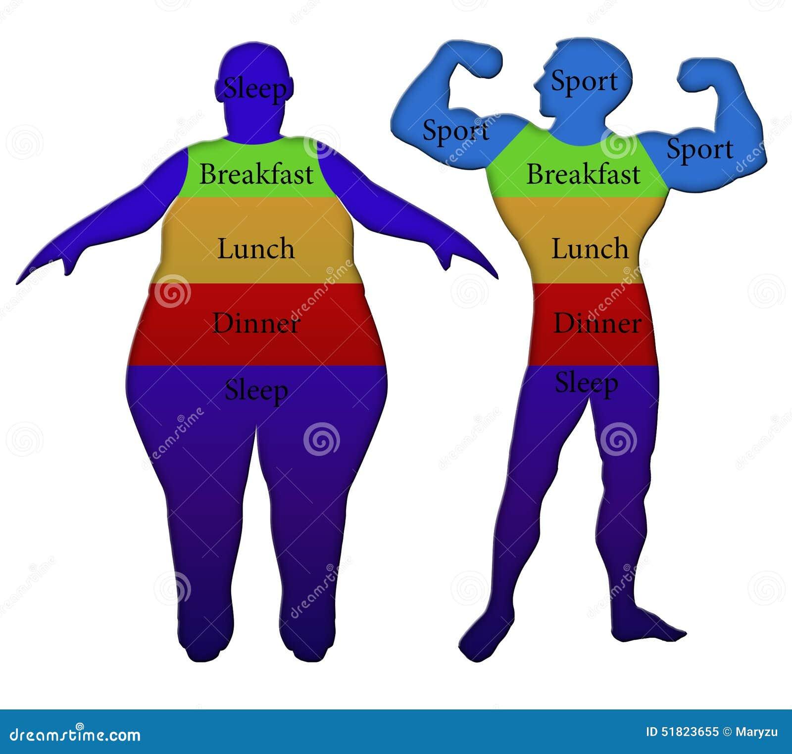 richtige diät