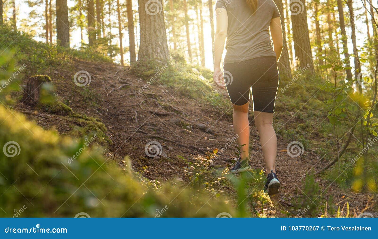 Sportig ung kvinna som går i skogbana på solnedgången