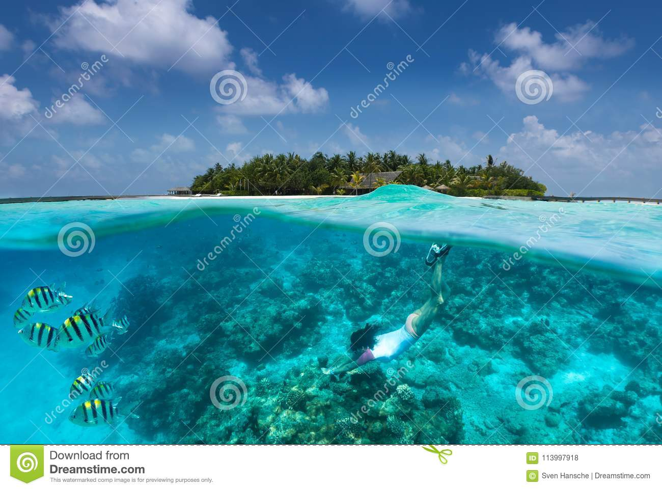 Sportive girl snorkels in turquoise waters over a coral reef in the Maldives