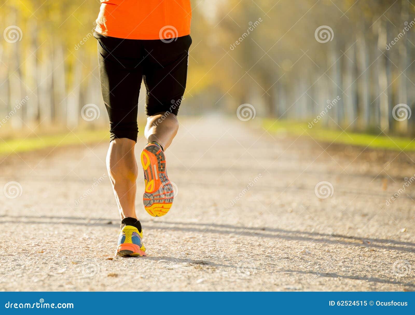 Sportmann mit dem starken Kalbmuskel, der draußen in weg von Straßenspur läuft, rieb mit Bäumen unter schönem Herbstsonnenlicht