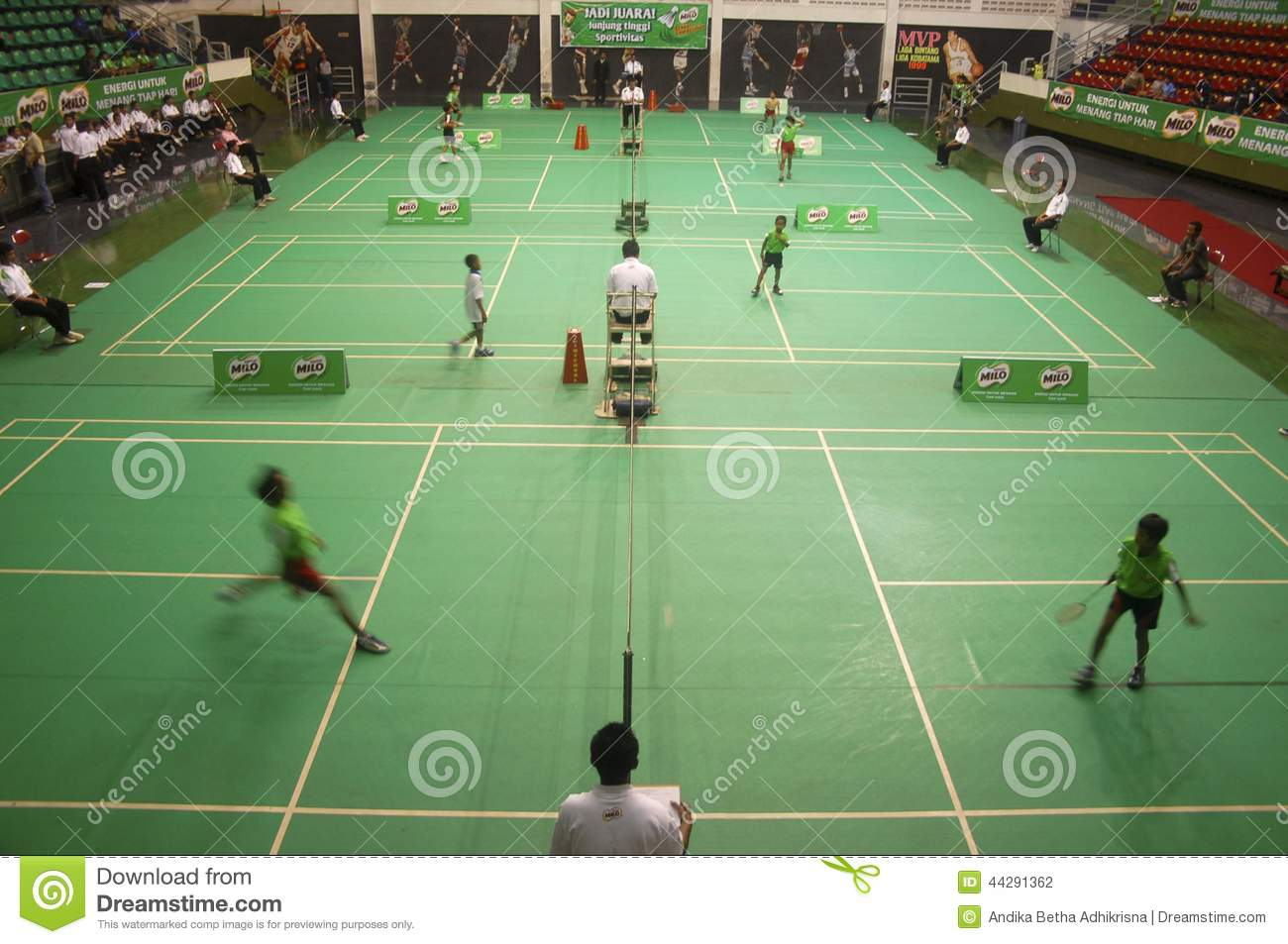 SPORTS IN INDONESIA
