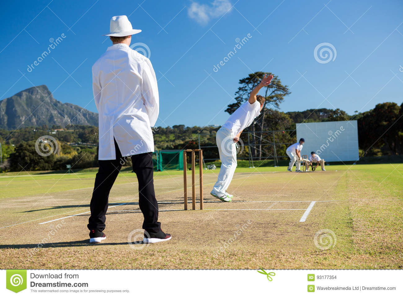 Sports team playing cricket on pitch