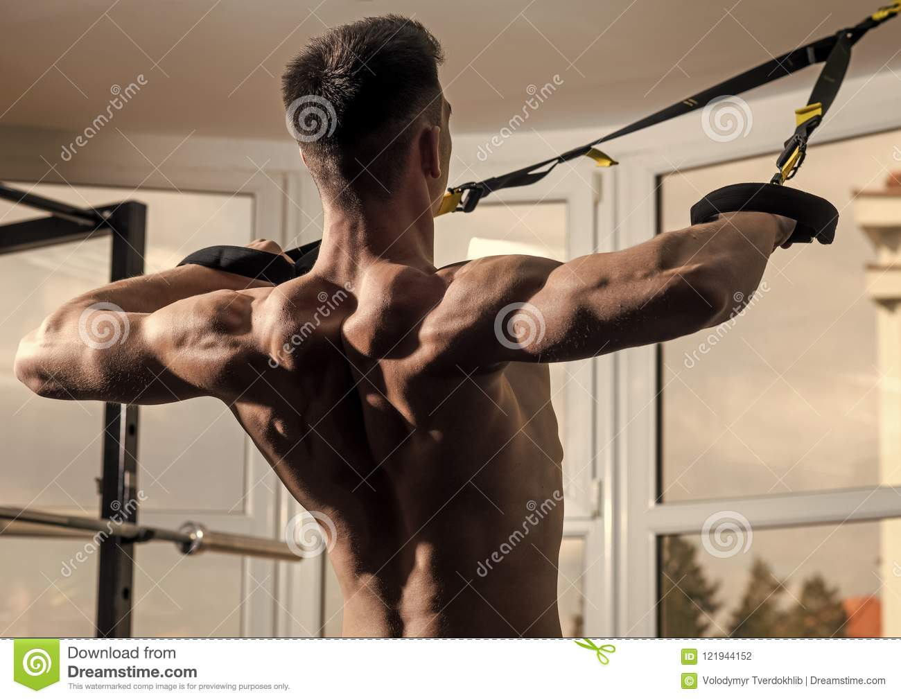 ... athlete, muscular macho does exercise with trx loops, window on  background, close up. Man with nude torso, and muscular back in gym enjoy  training, trx.