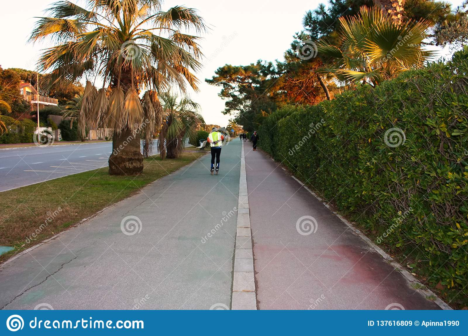 Sporty man ski with skis on the paved promenade walk in the bike path. outdoor sports. road skis with steering skid