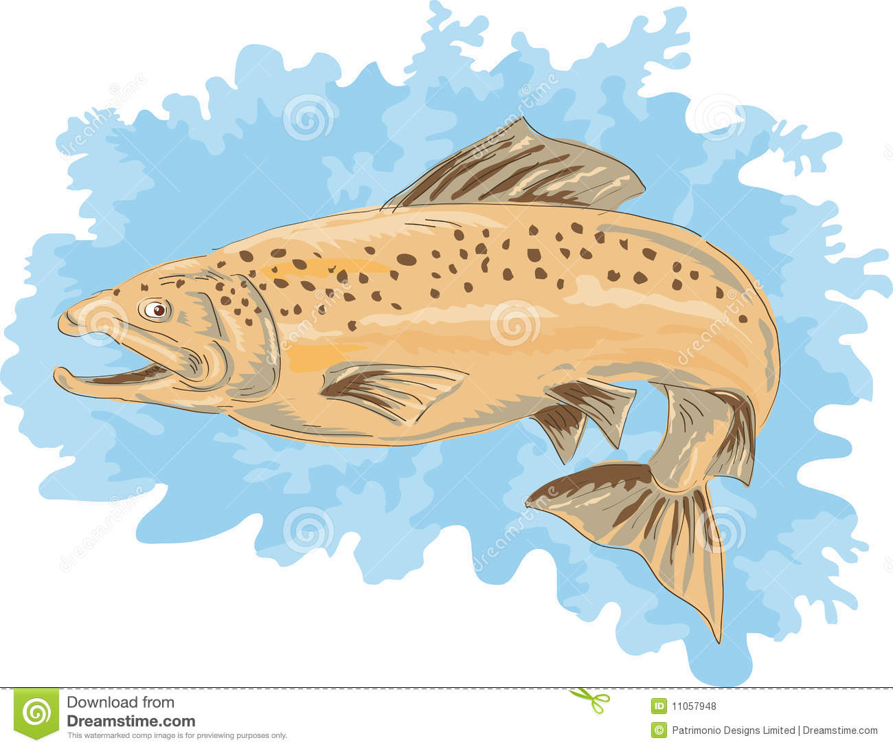 Download Spotted Brown  Trout Jumping Stock Vector - Illustration of watercolor, drawing: 11057948