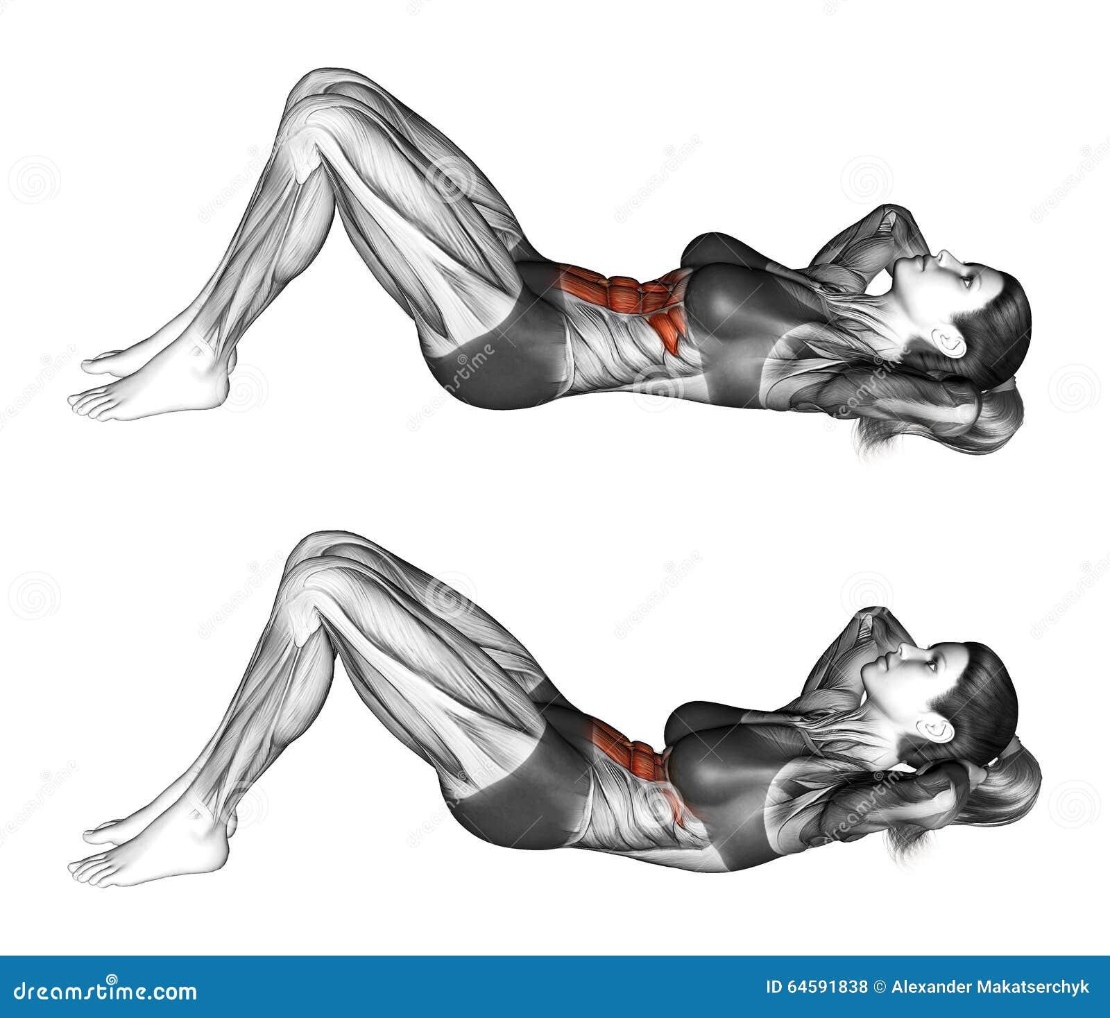 Sprawności fizycznej ćwiczyć Flexion bagażnik z wzrostem pelvis lying on the beach na podłoga femaleness