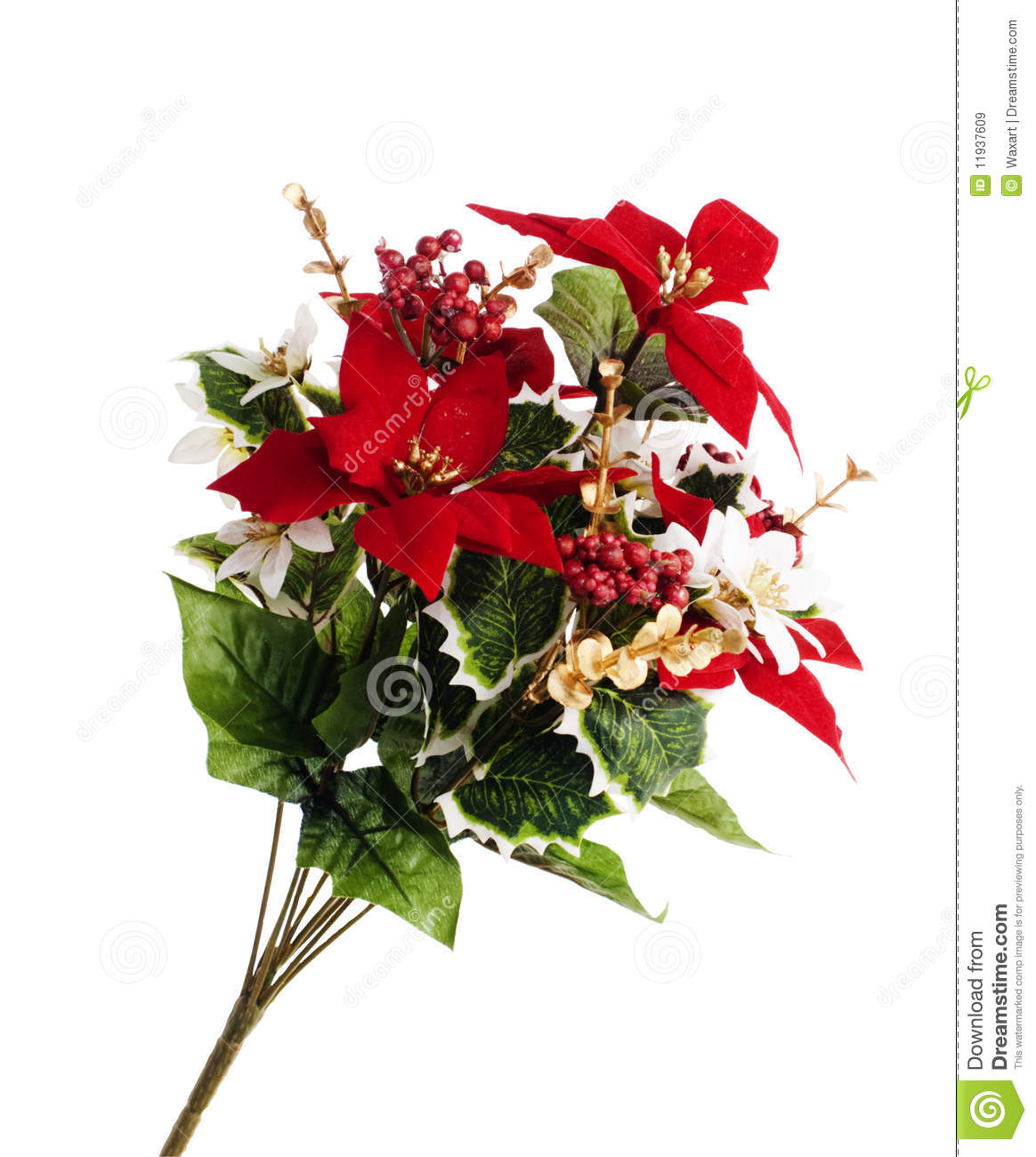 spray of christmas flowers royalty free stock images  image, Natural flower