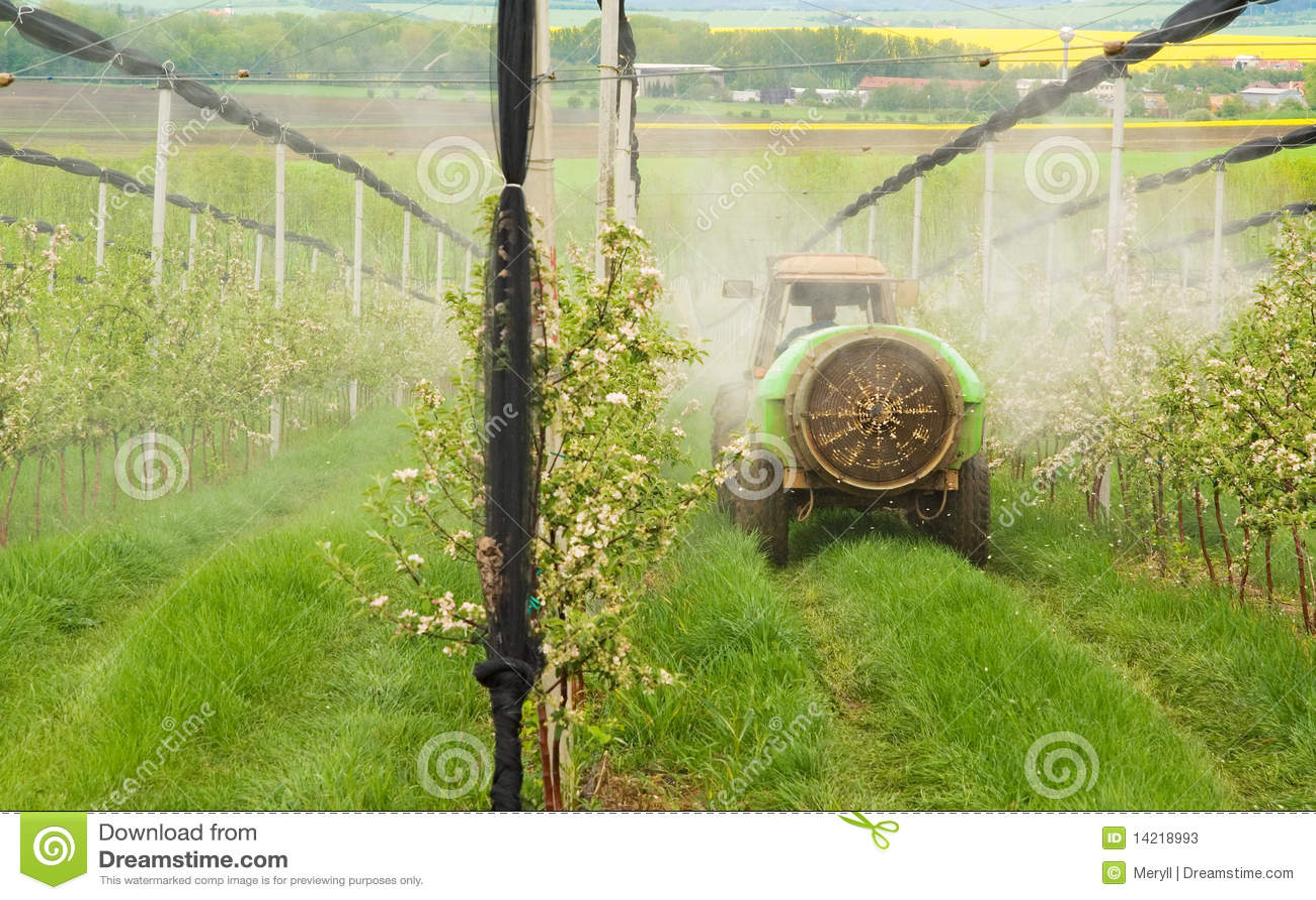 Sprejande trees för fruktträdgård