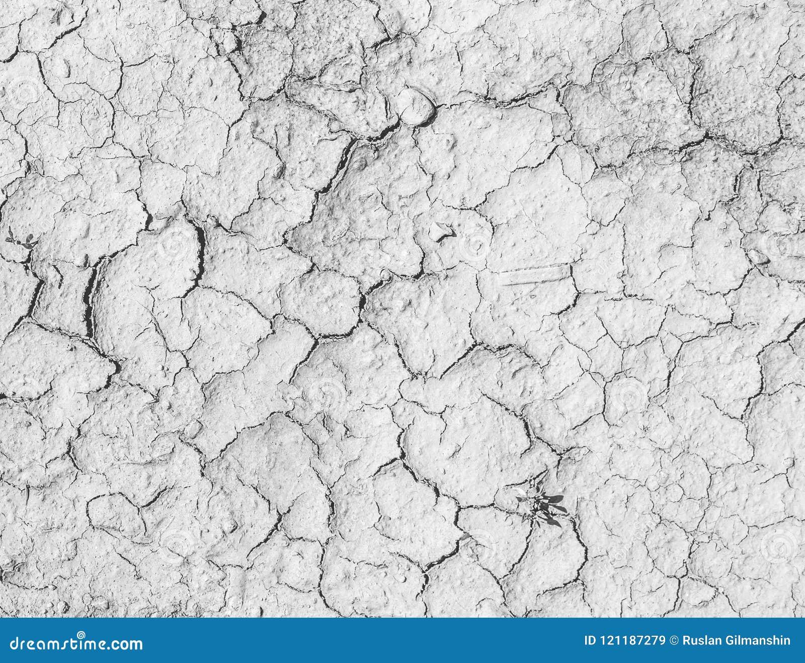 Sprickor på den salta jordningen Texturerad bakgrund för design