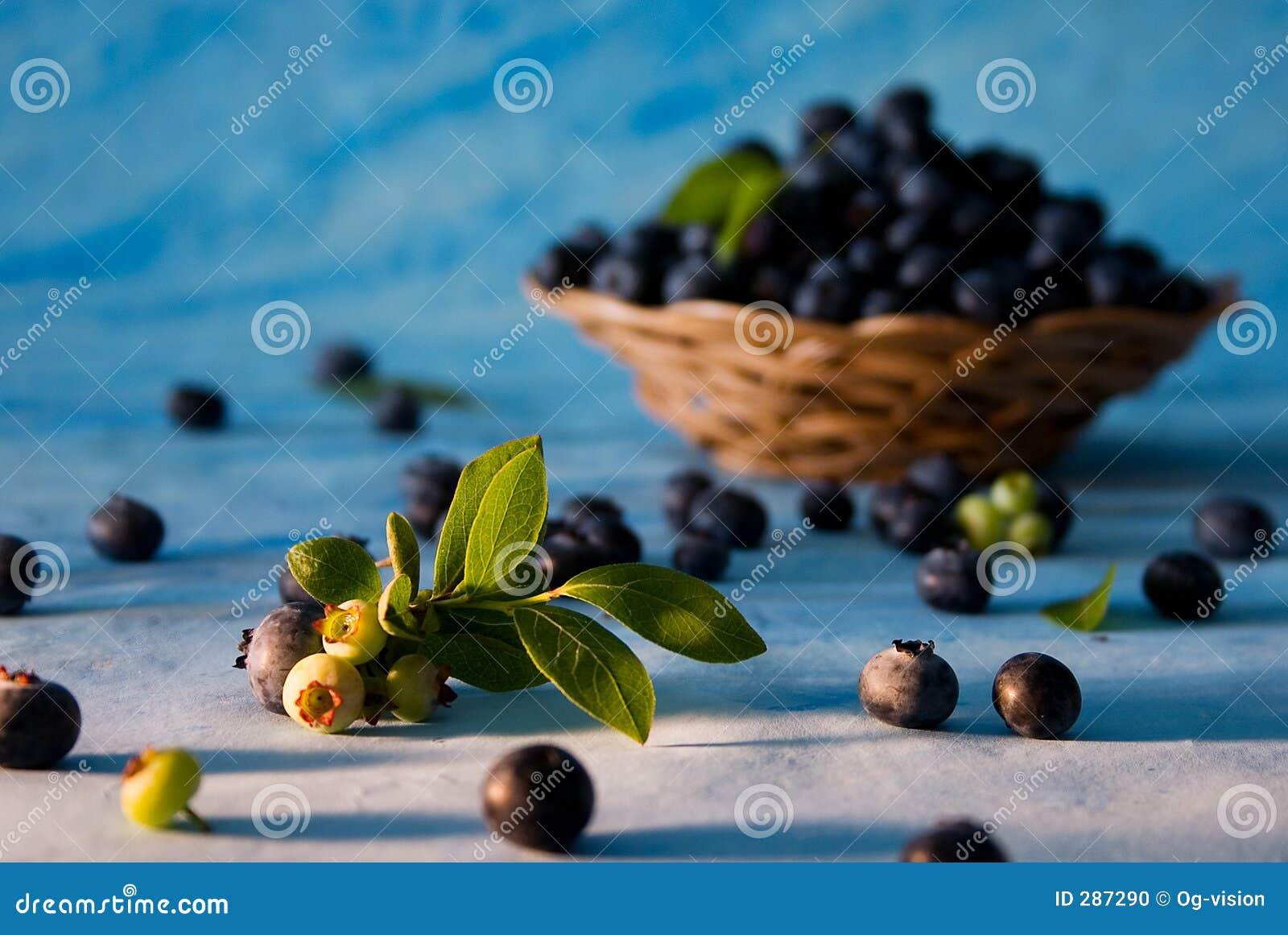 Spridda bluberries